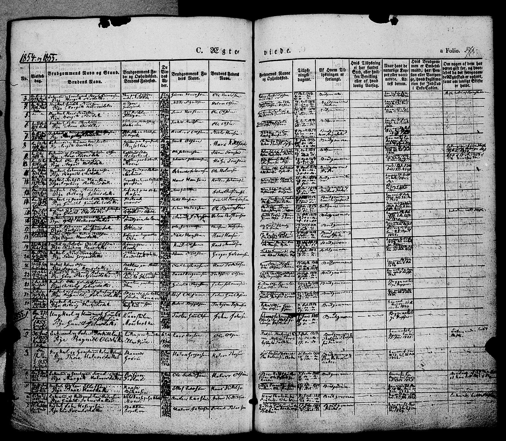 SAKO, Hjartdal kirkebøker, F/Fa/L0008: Ministerialbok nr. I 8, 1844-1859, s. 271