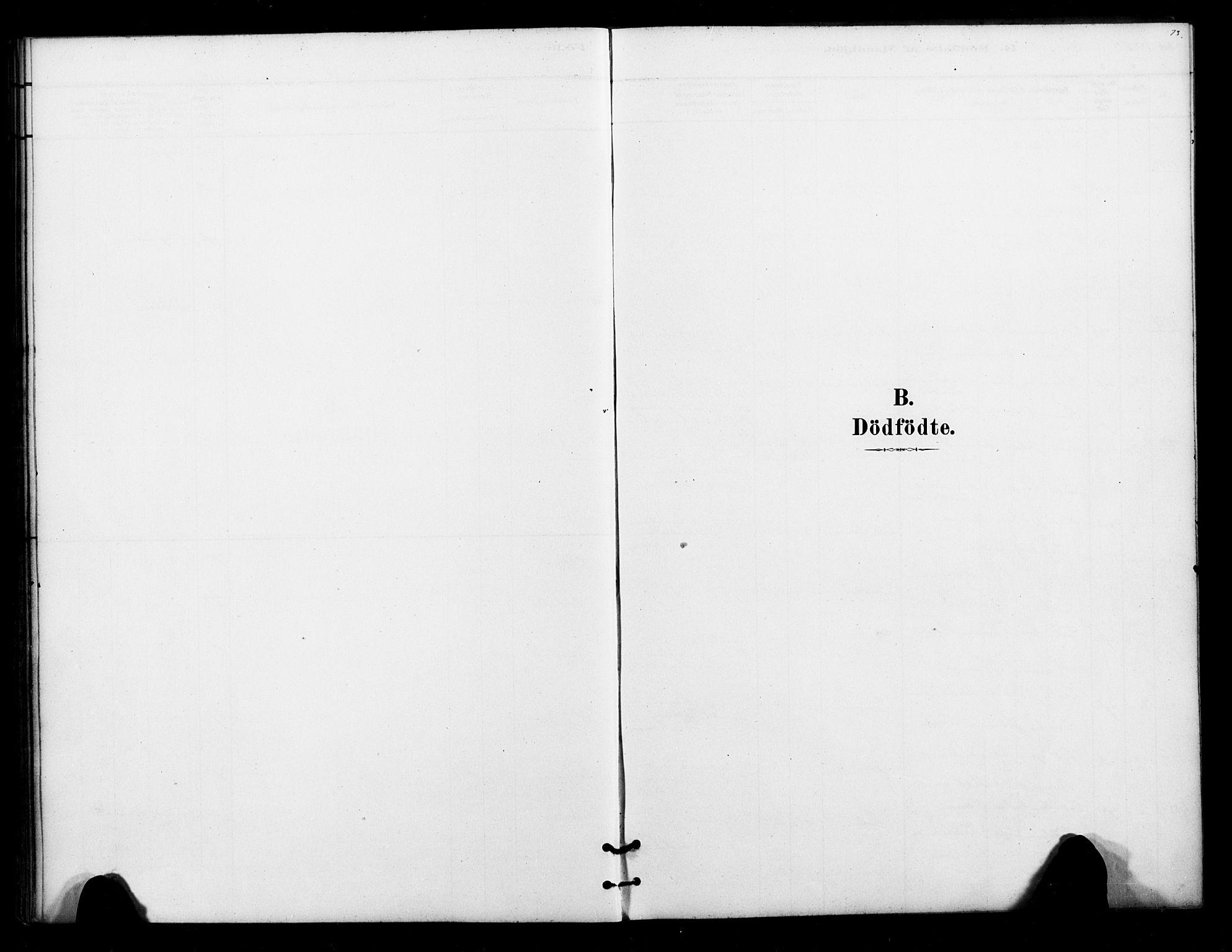 SATØ, Lenvik sokneprestembete, H/Ha: Ministerialbok nr. 12, 1880-1895, s. 73