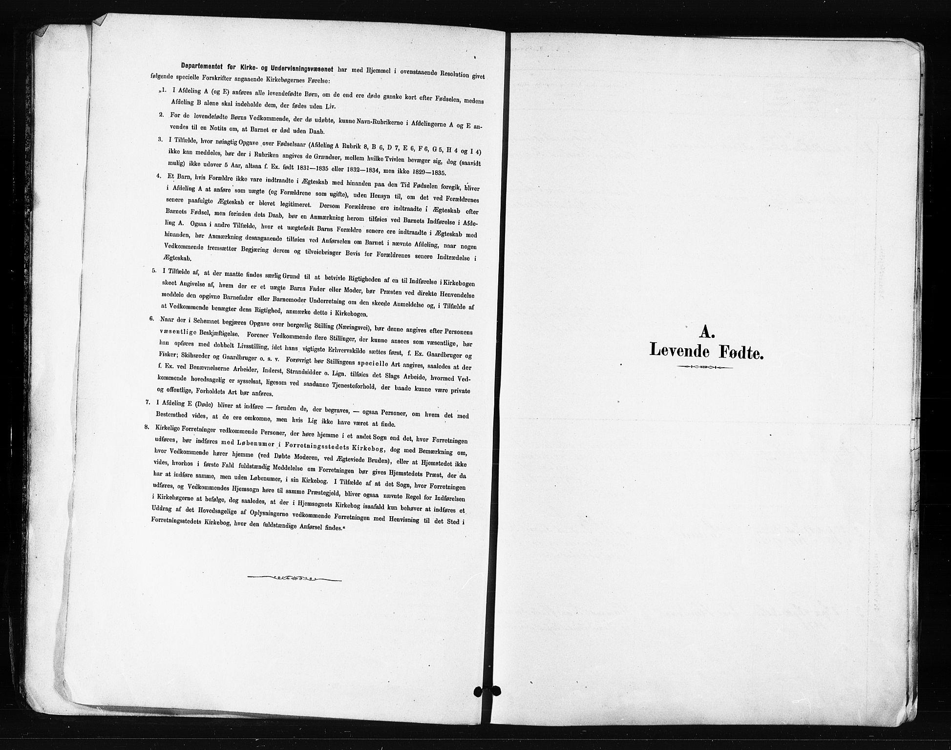 SATØ, Skjervøy sokneprestkontor, H/Ha/Haa/L0014kirke: Ministerialbok nr. 14, 1878-1894