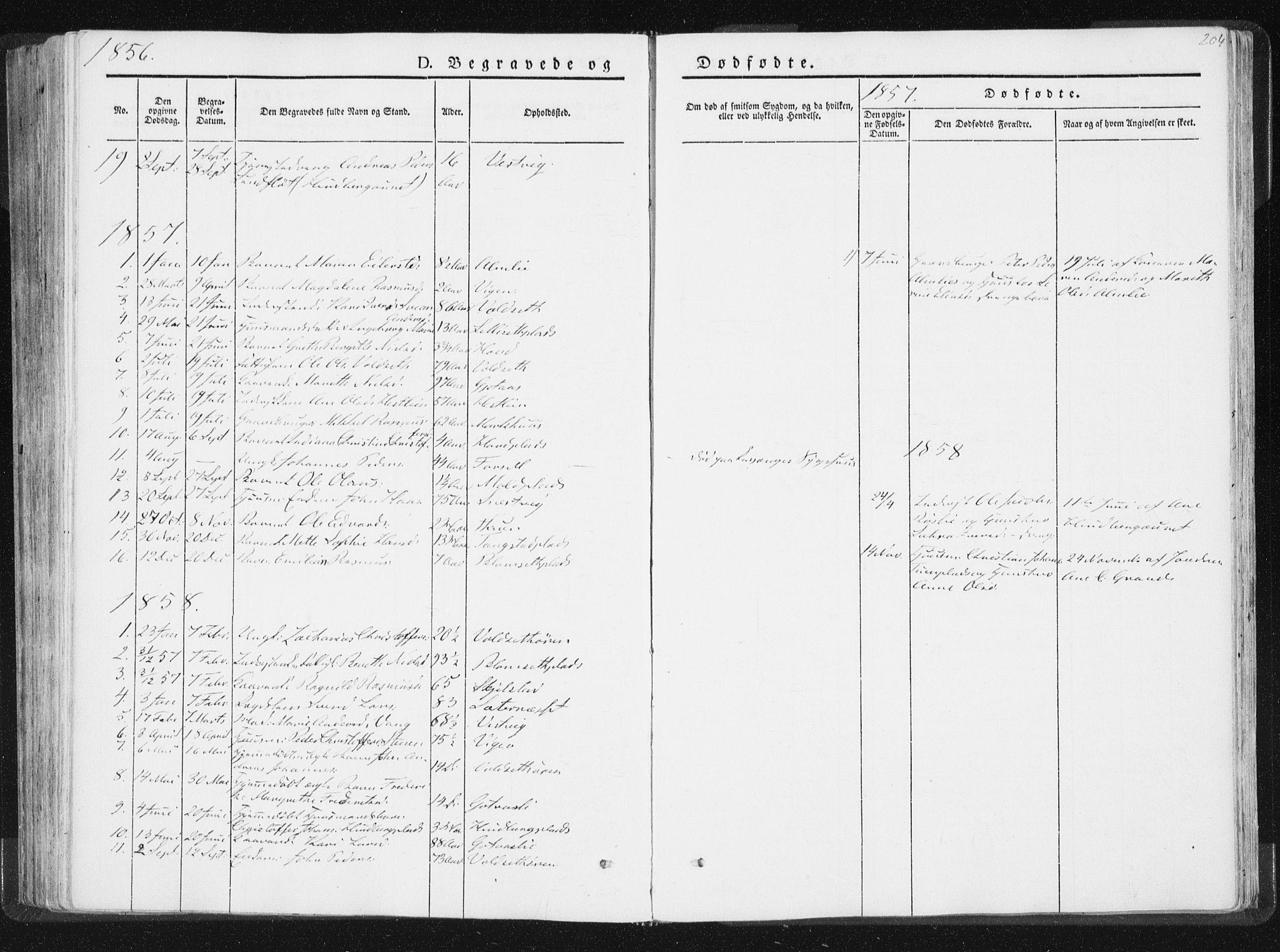 SAT, Ministerialprotokoller, klokkerbøker og fødselsregistre - Nord-Trøndelag, 744/L0418: Ministerialbok nr. 744A02, 1843-1866, s. 204