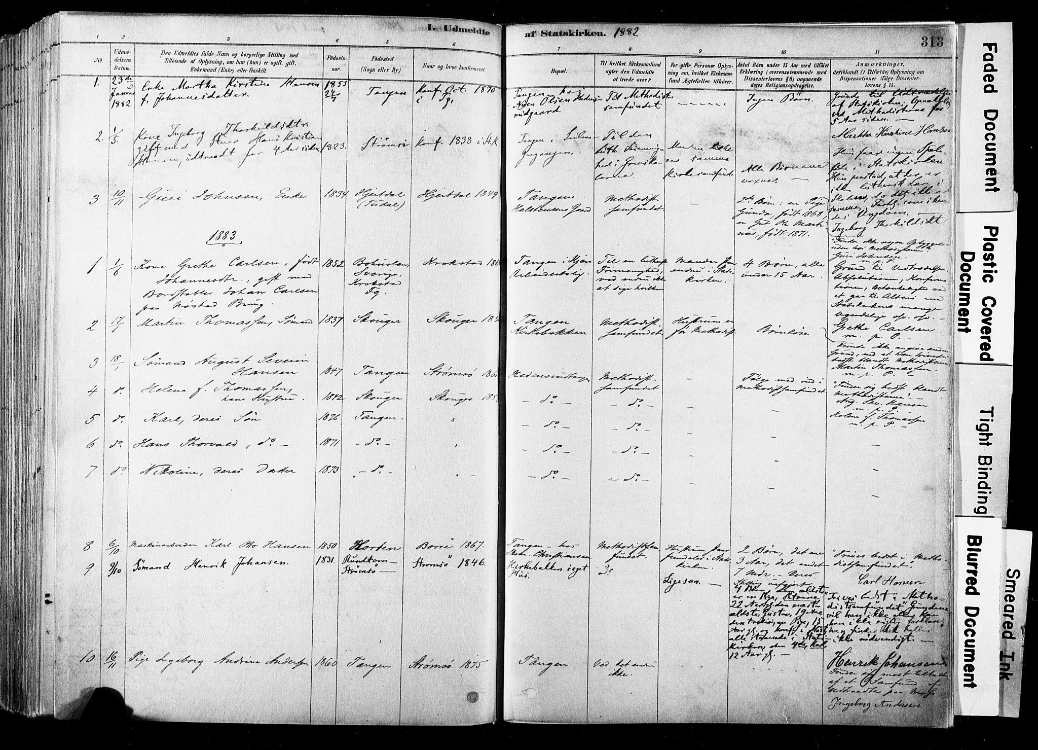 SAKO, Strømsø kirkebøker, F/Fb/L0006: Ministerialbok nr. II 6, 1879-1910, s. 313
