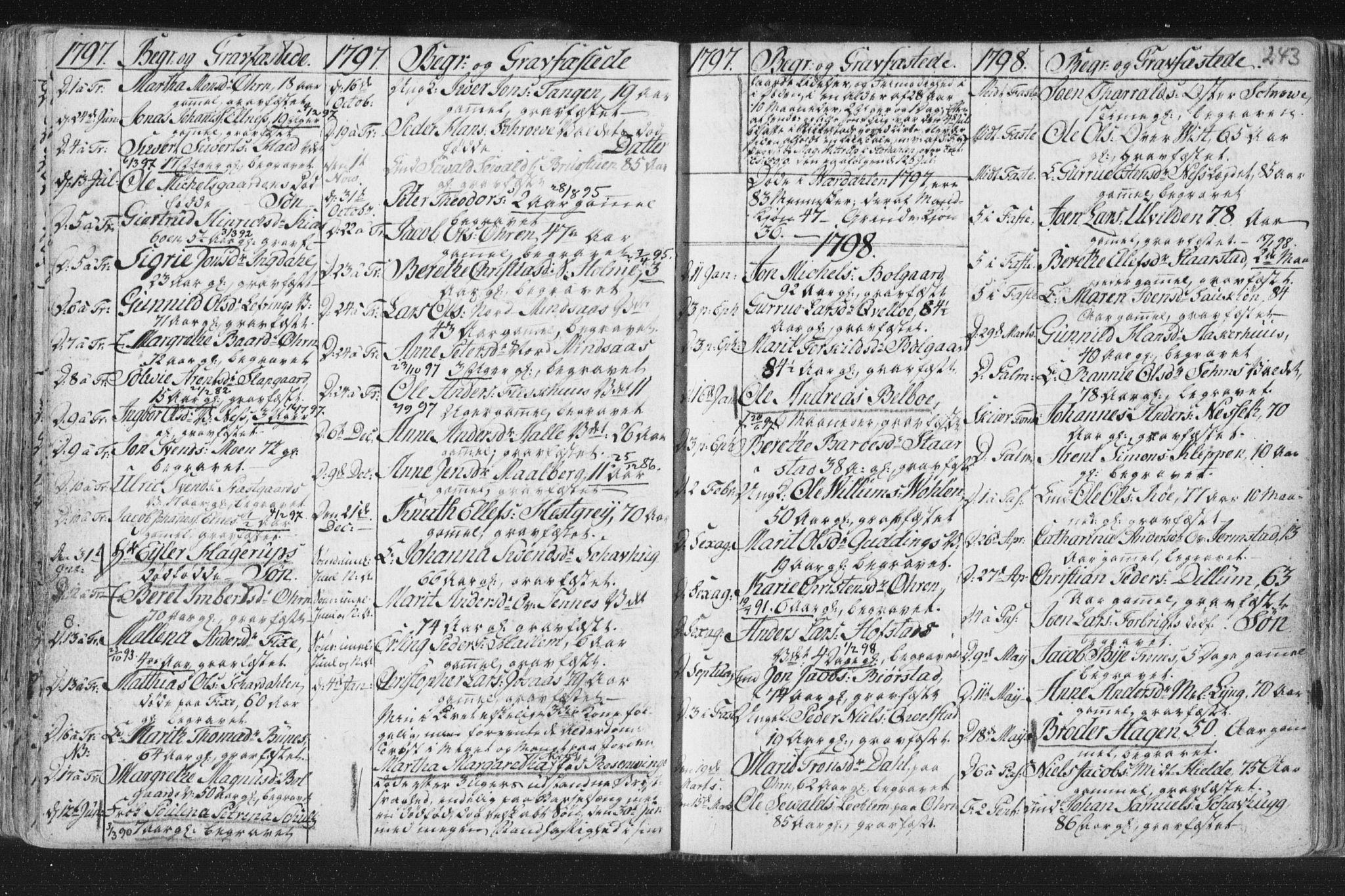 SAT, Ministerialprotokoller, klokkerbøker og fødselsregistre - Nord-Trøndelag, 723/L0232: Ministerialbok nr. 723A03, 1781-1804, s. 243