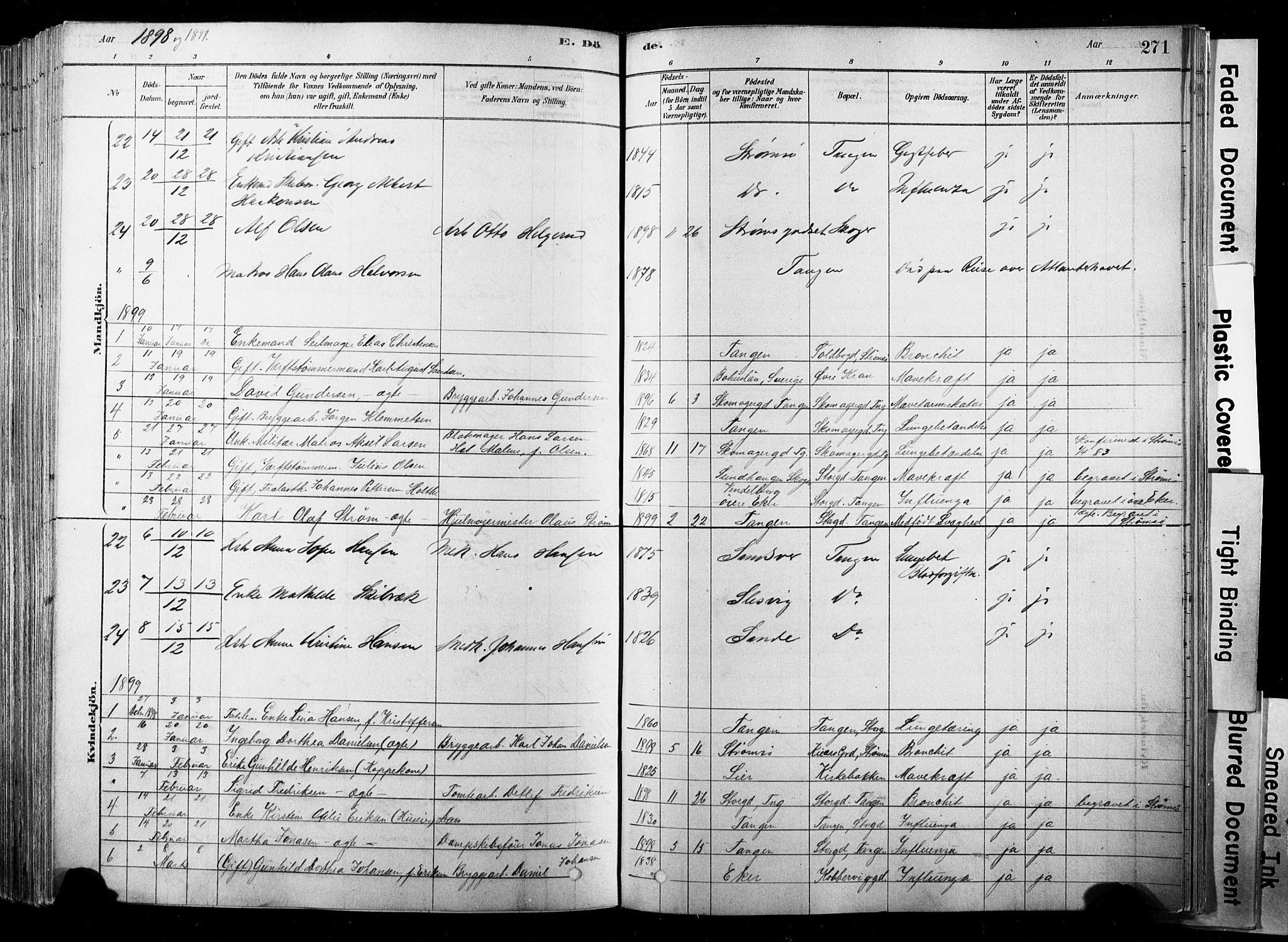 SAKO, Strømsø kirkebøker, F/Fb/L0006: Ministerialbok nr. II 6, 1879-1910, s. 271