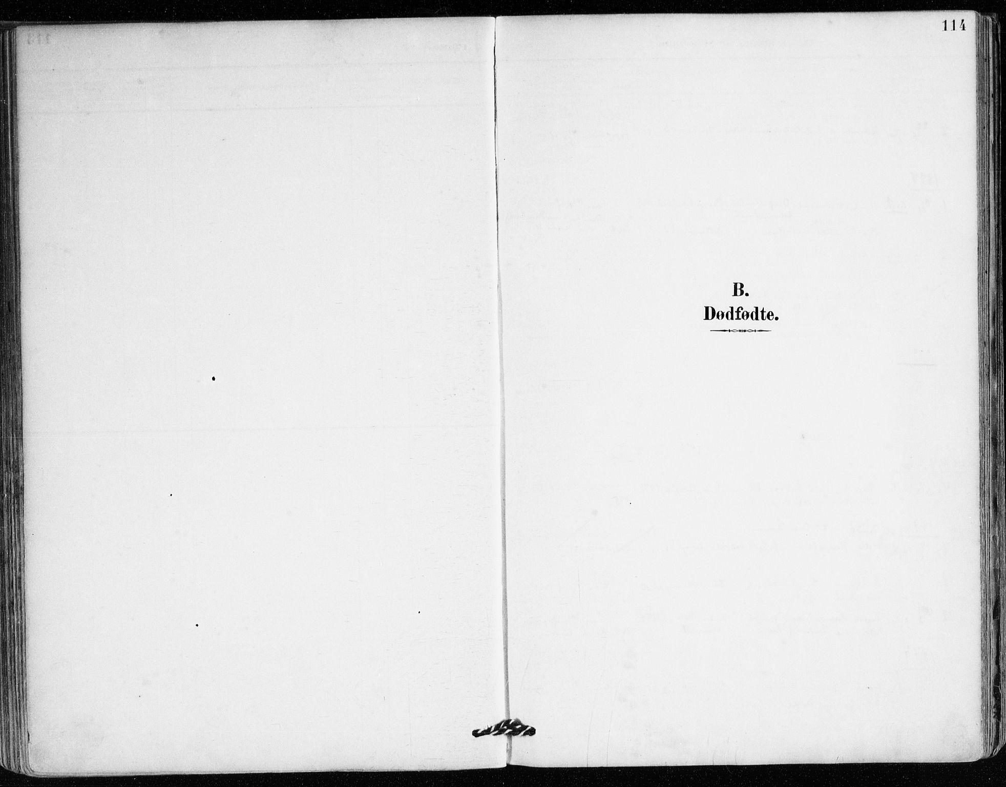 SAB, Mariakirken Sokneprestembete, H/Haa/L0008: Ministerialbok nr. A 8, 1893-1942, s. 114