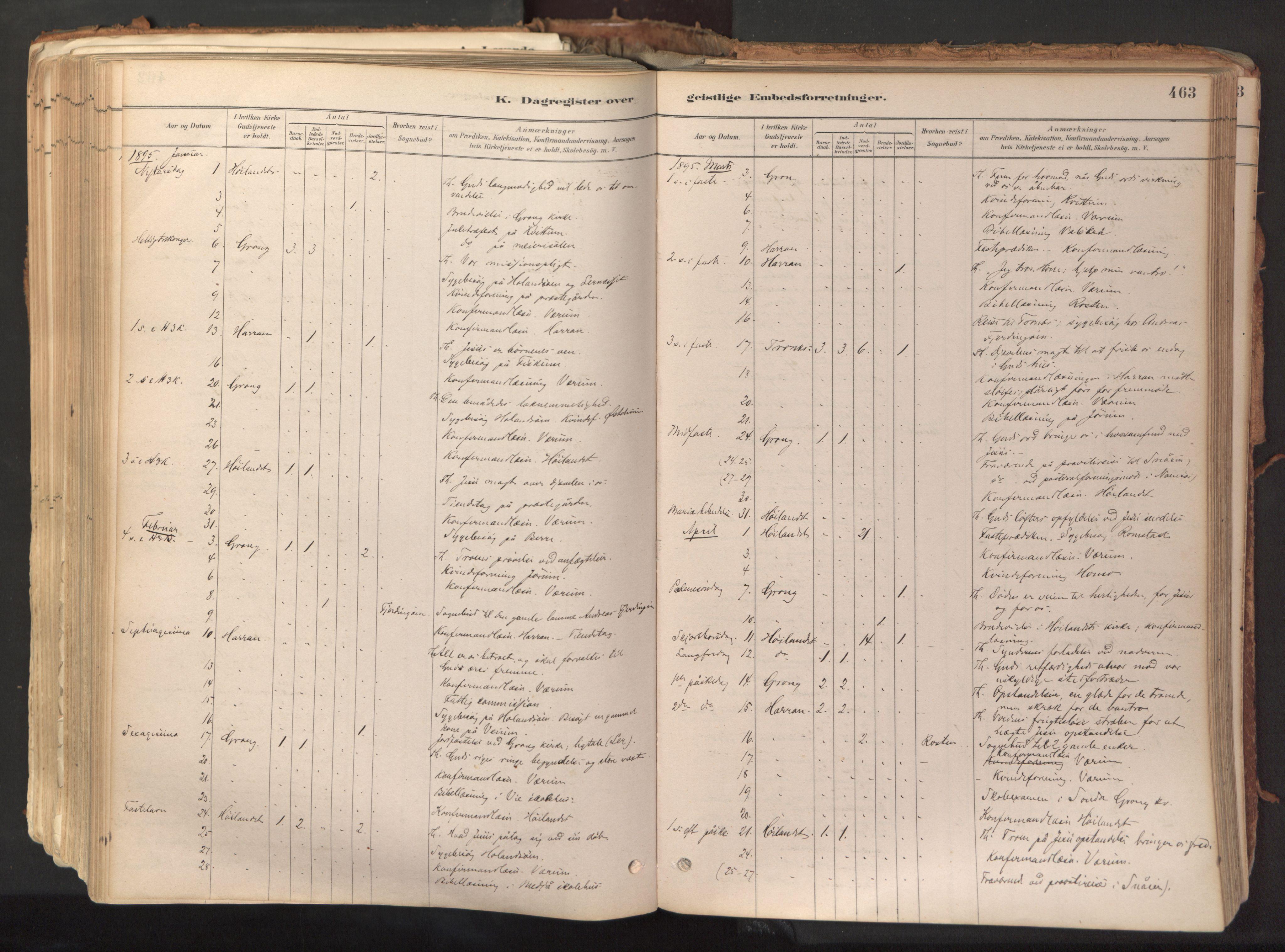 SAT, Ministerialprotokoller, klokkerbøker og fødselsregistre - Nord-Trøndelag, 758/L0519: Ministerialbok nr. 758A04, 1880-1926, s. 463
