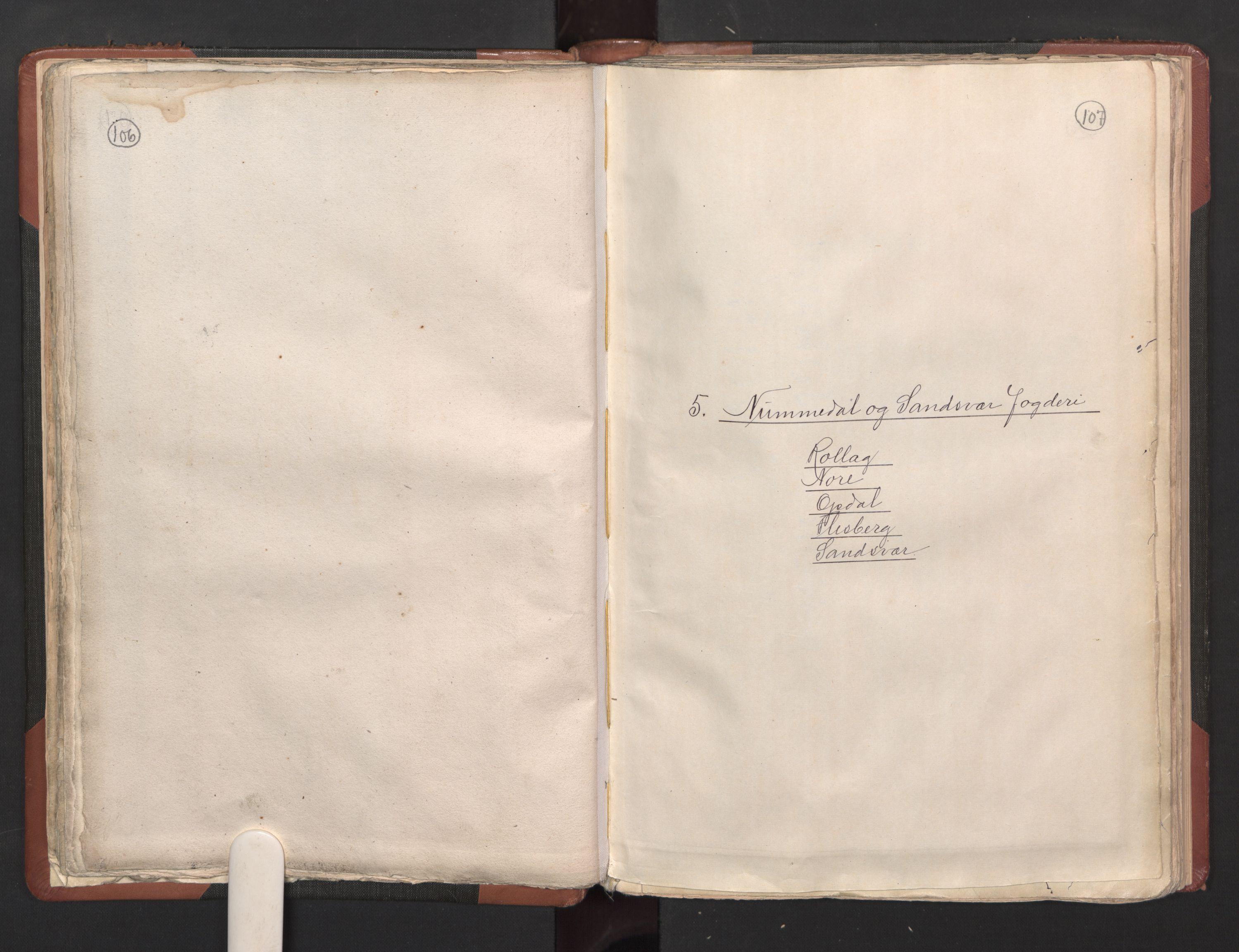 RA, Fogdenes og sorenskrivernes manntall 1664-1666, nr. 5: Fogderier (len og skipreider) i nåværende Buskerud fylke og Vestfold fylke, 1664, s. 106-107