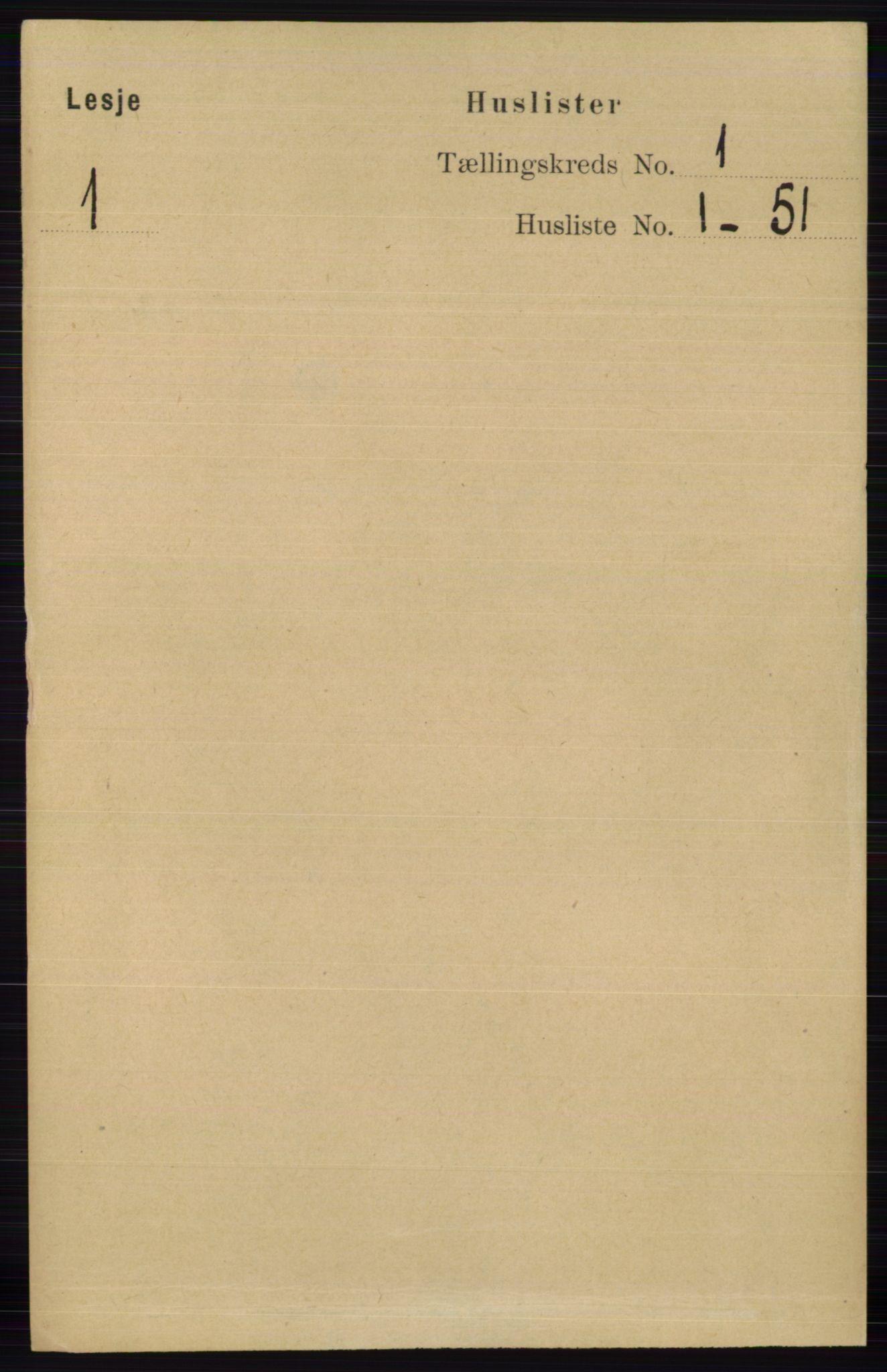 RA, Folketelling 1891 for 0512 Lesja herred, 1891, s. 22