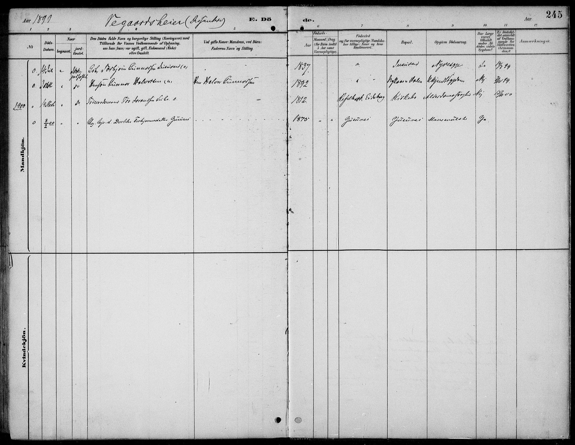 SAKO, Kviteseid kirkebøker, F/Fb/L0002: Ministerialbok nr. II 2, 1882-1916, s. 245