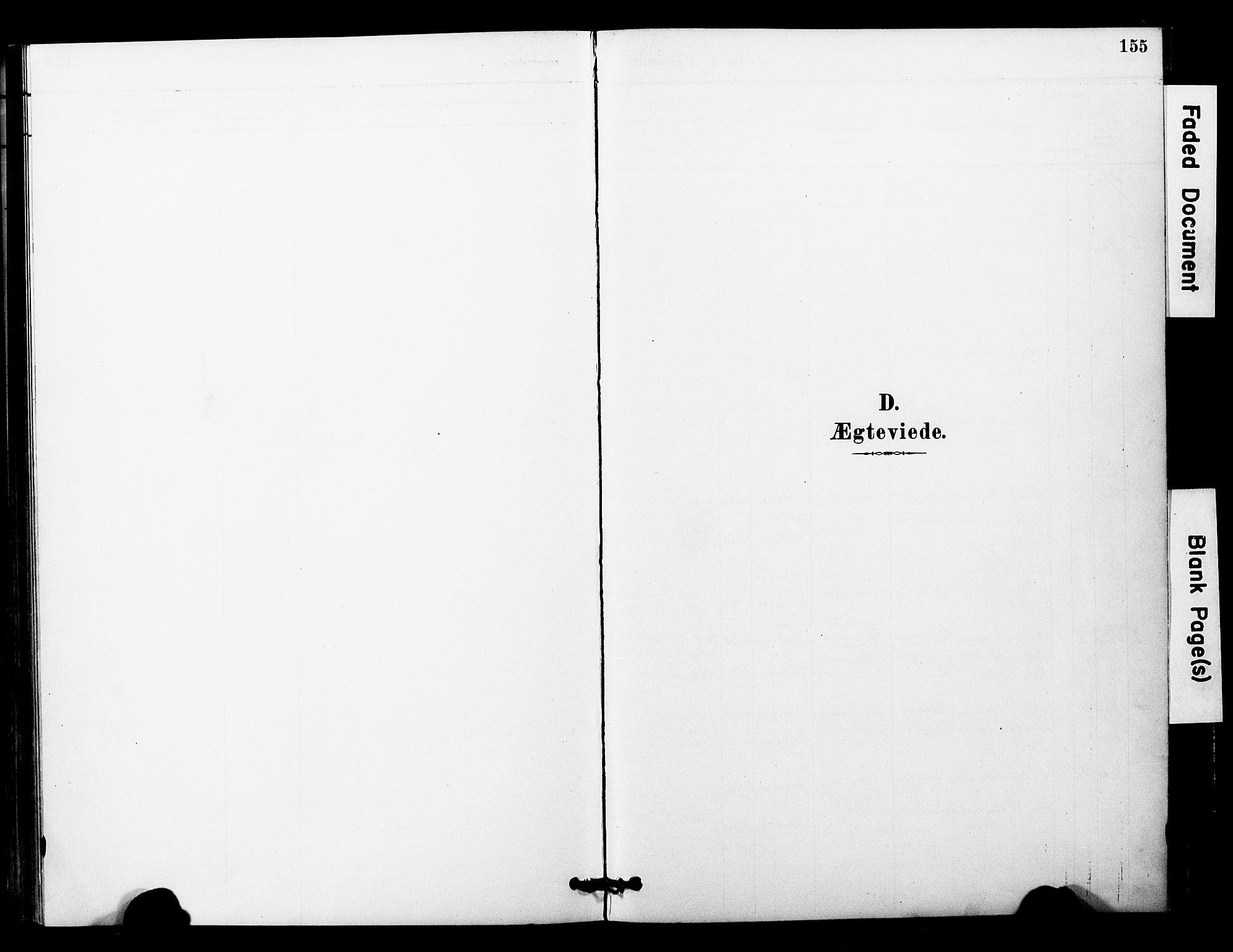 SAT, Ministerialprotokoller, klokkerbøker og fødselsregistre - Nord-Trøndelag, 757/L0505: Ministerialbok nr. 757A01, 1882-1904, s. 155