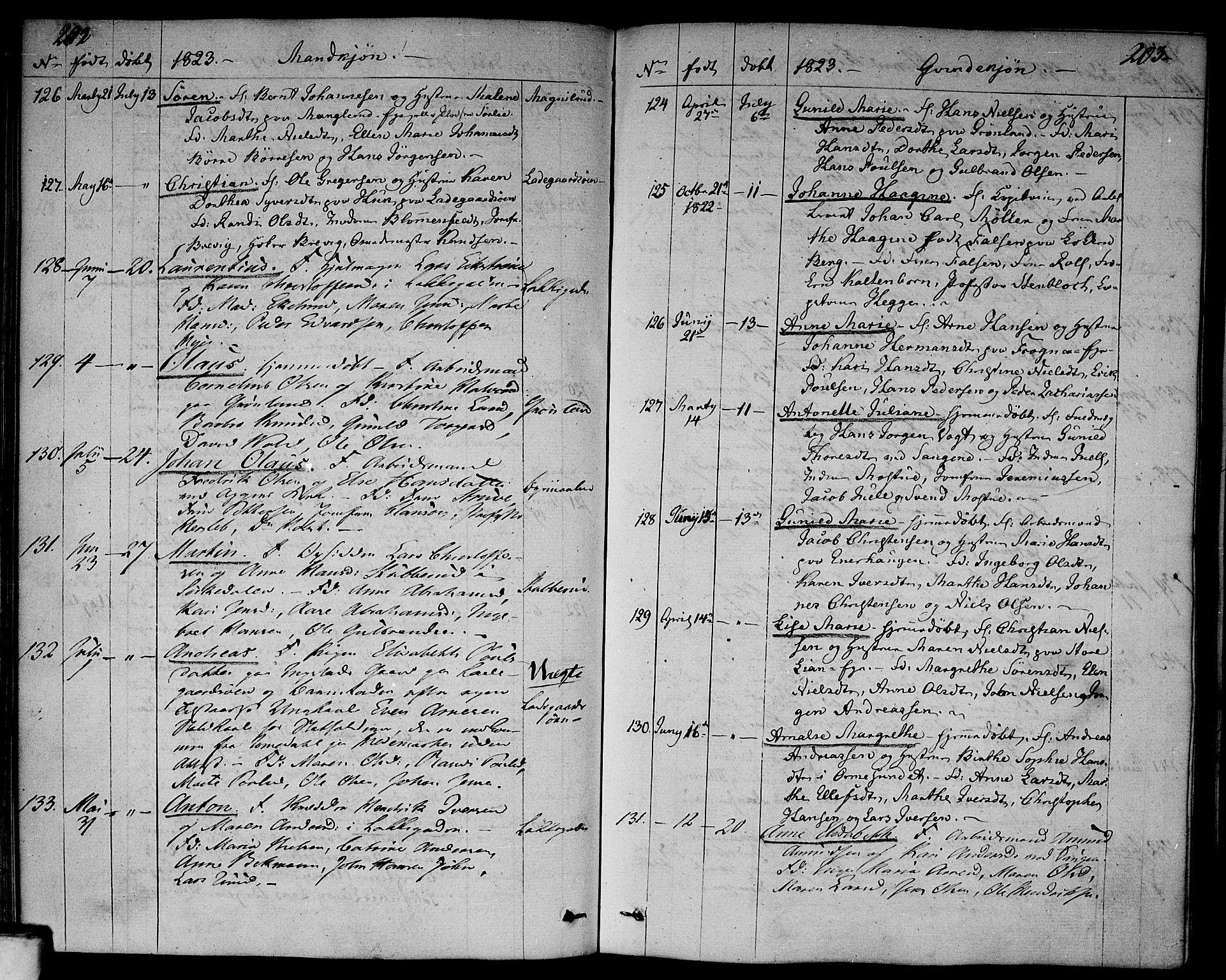 SAO, Aker prestekontor kirkebøker, F/L0012: Ministerialbok nr. 12, 1819-1828, s. 202-203