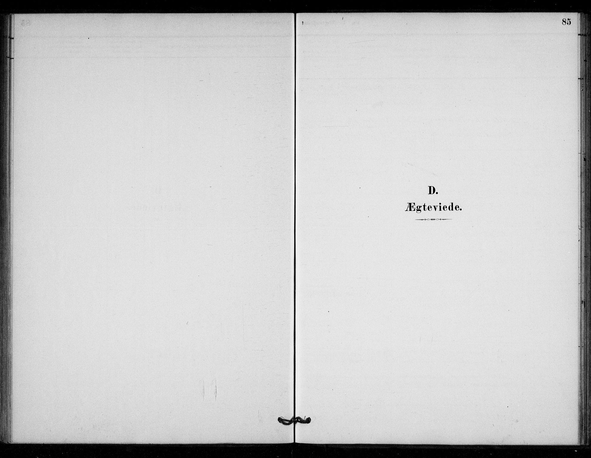 SAT, Ministerialprotokoller, klokkerbøker og fødselsregistre - Sør-Trøndelag, 670/L0836: Ministerialbok nr. 670A01, 1879-1904, s. 85