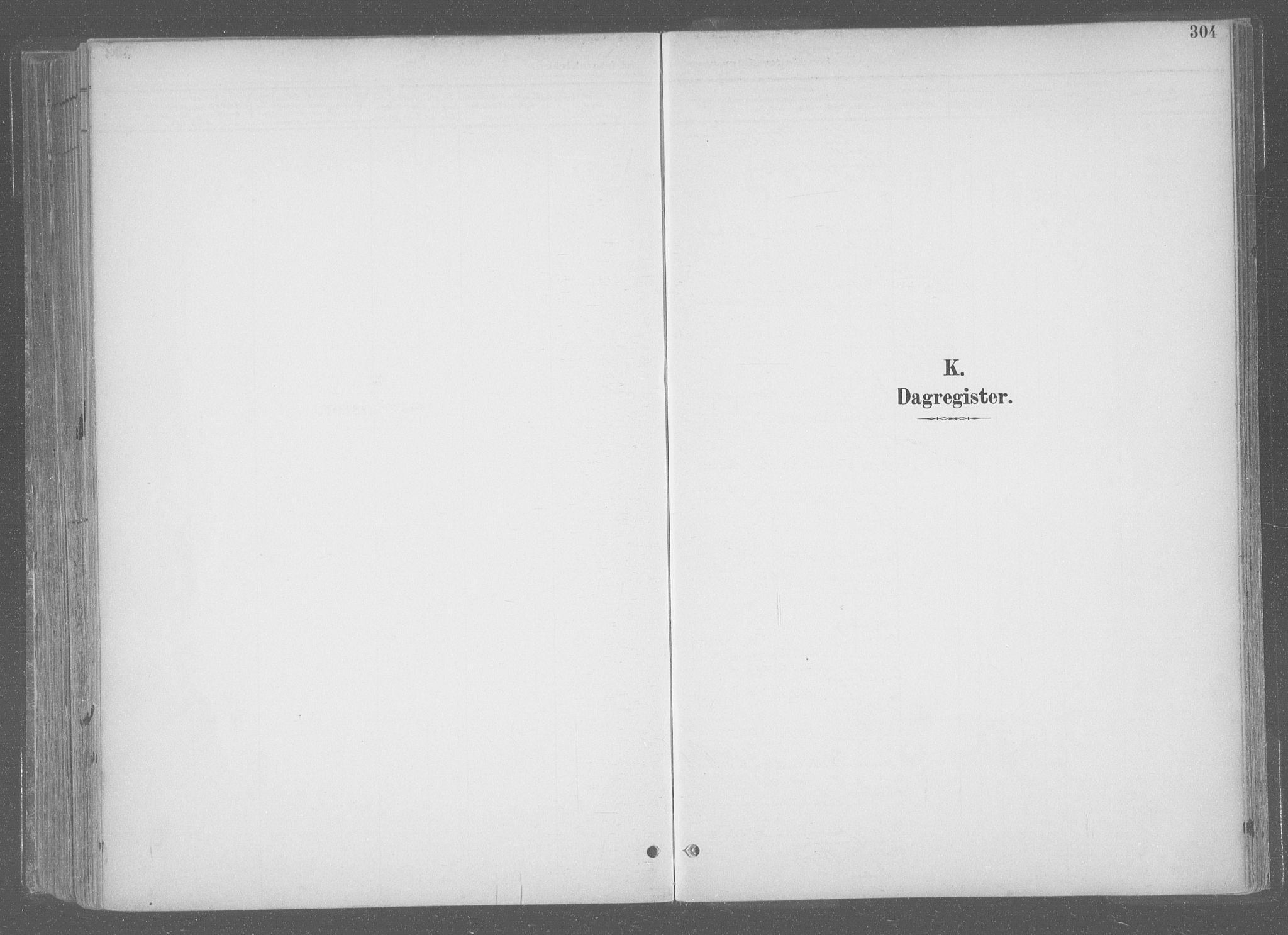 SAT, Ministerialprotokoller, klokkerbøker og fødselsregistre - Sør-Trøndelag, 601/L0064: Ministerialbok nr. 601A31, 1891-1911, s. 304