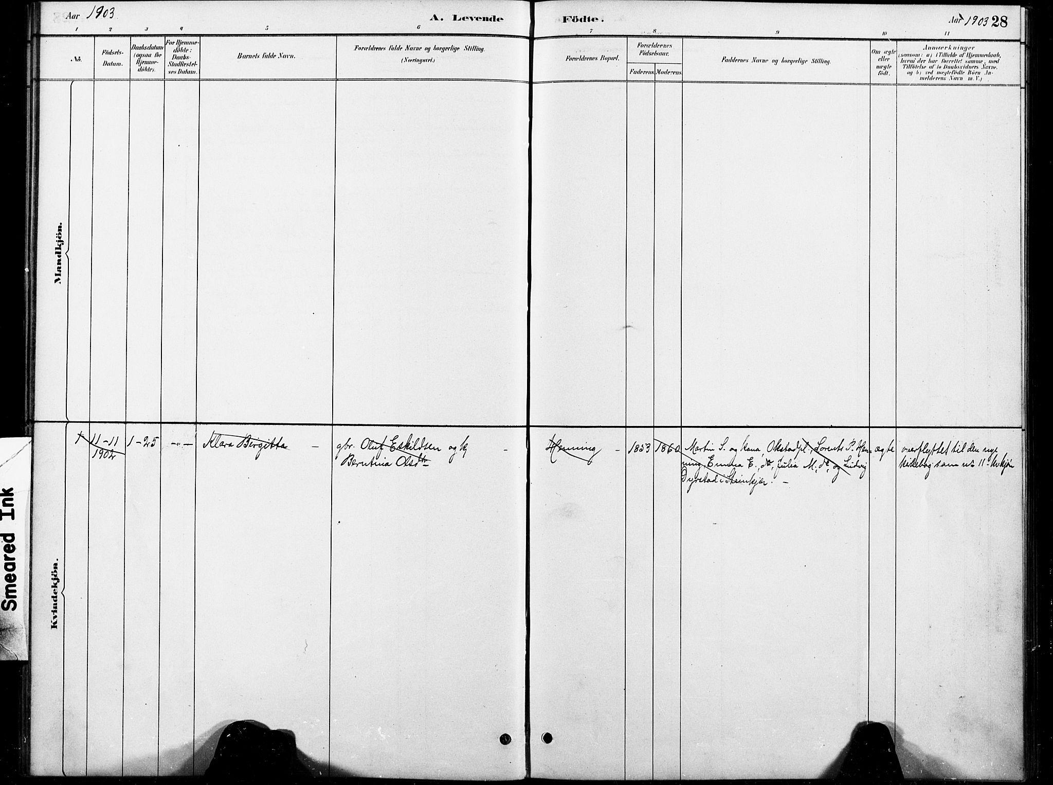 SAT, Ministerialprotokoller, klokkerbøker og fødselsregistre - Nord-Trøndelag, 738/L0364: Ministerialbok nr. 738A01, 1884-1902, s. 28