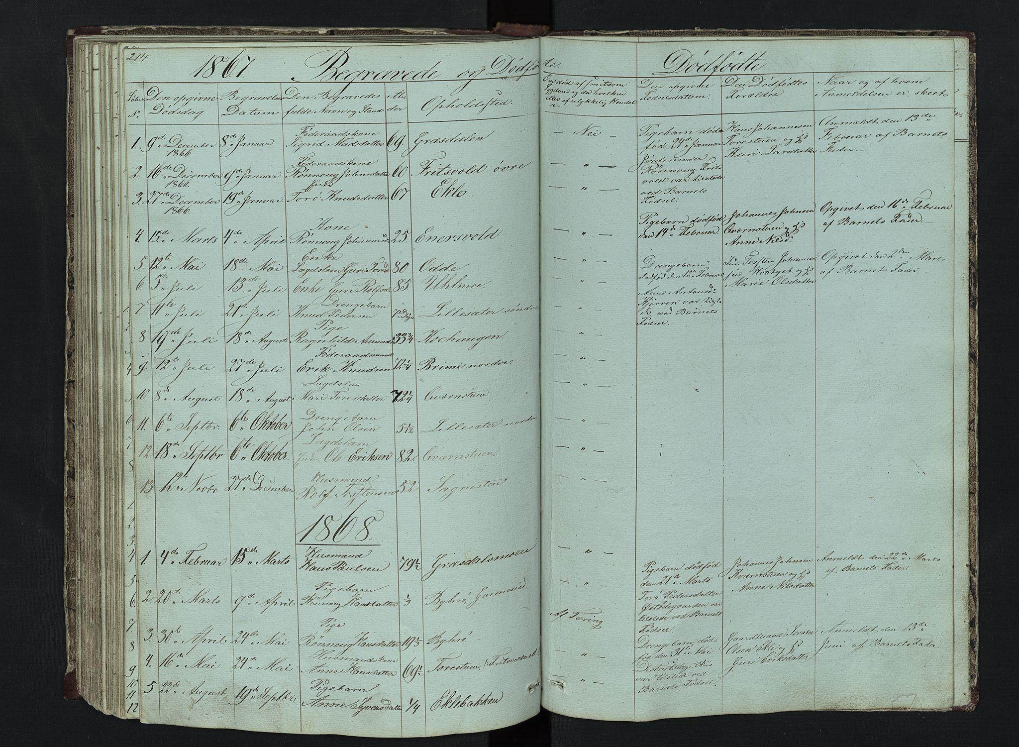 SAH, Lom prestekontor, L/L0014: Klokkerbok nr. 14, 1845-1876, s. 214-215