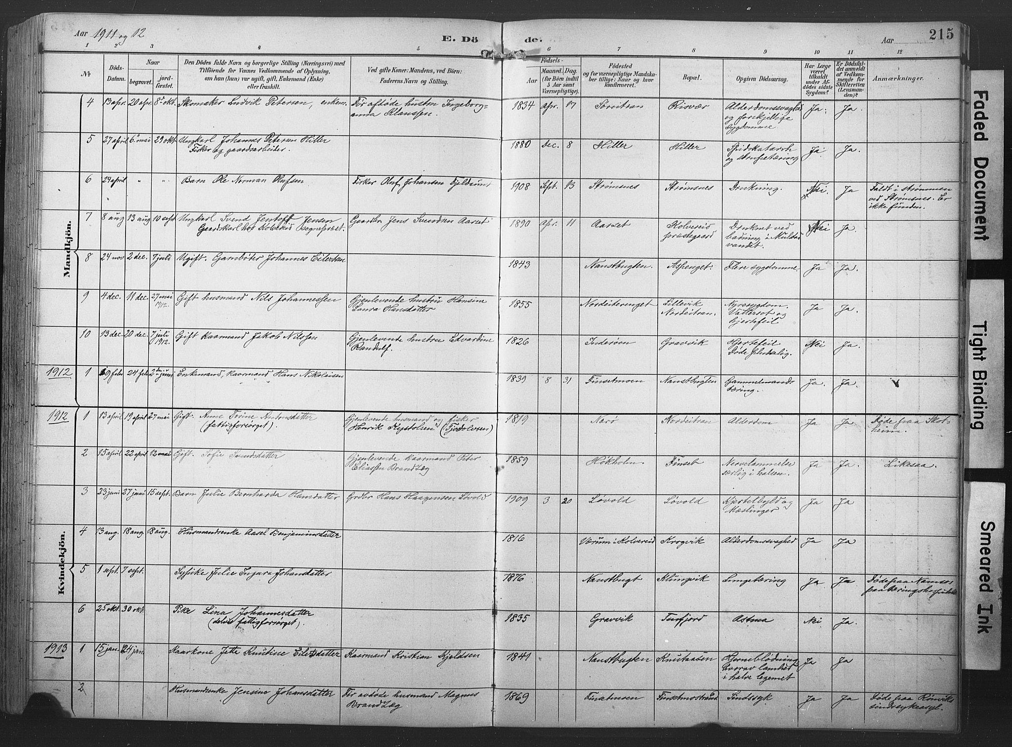 SAT, Ministerialprotokoller, klokkerbøker og fødselsregistre - Nord-Trøndelag, 789/L0706: Klokkerbok nr. 789C01, 1888-1931, s. 215