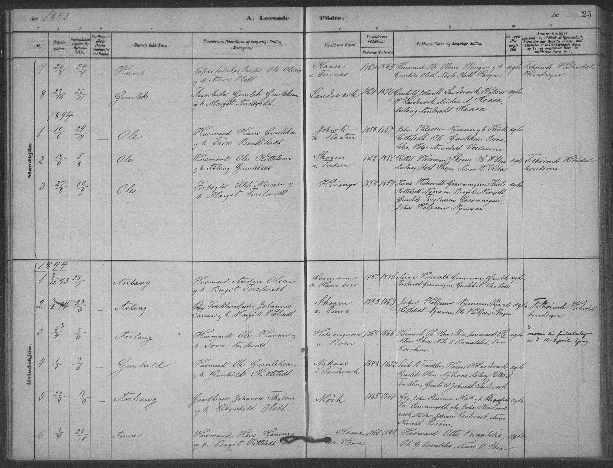 SAKO, Heddal kirkebøker, F/Fb/L0002: Ministerialbok nr. II 2, 1878-1913, s. 25