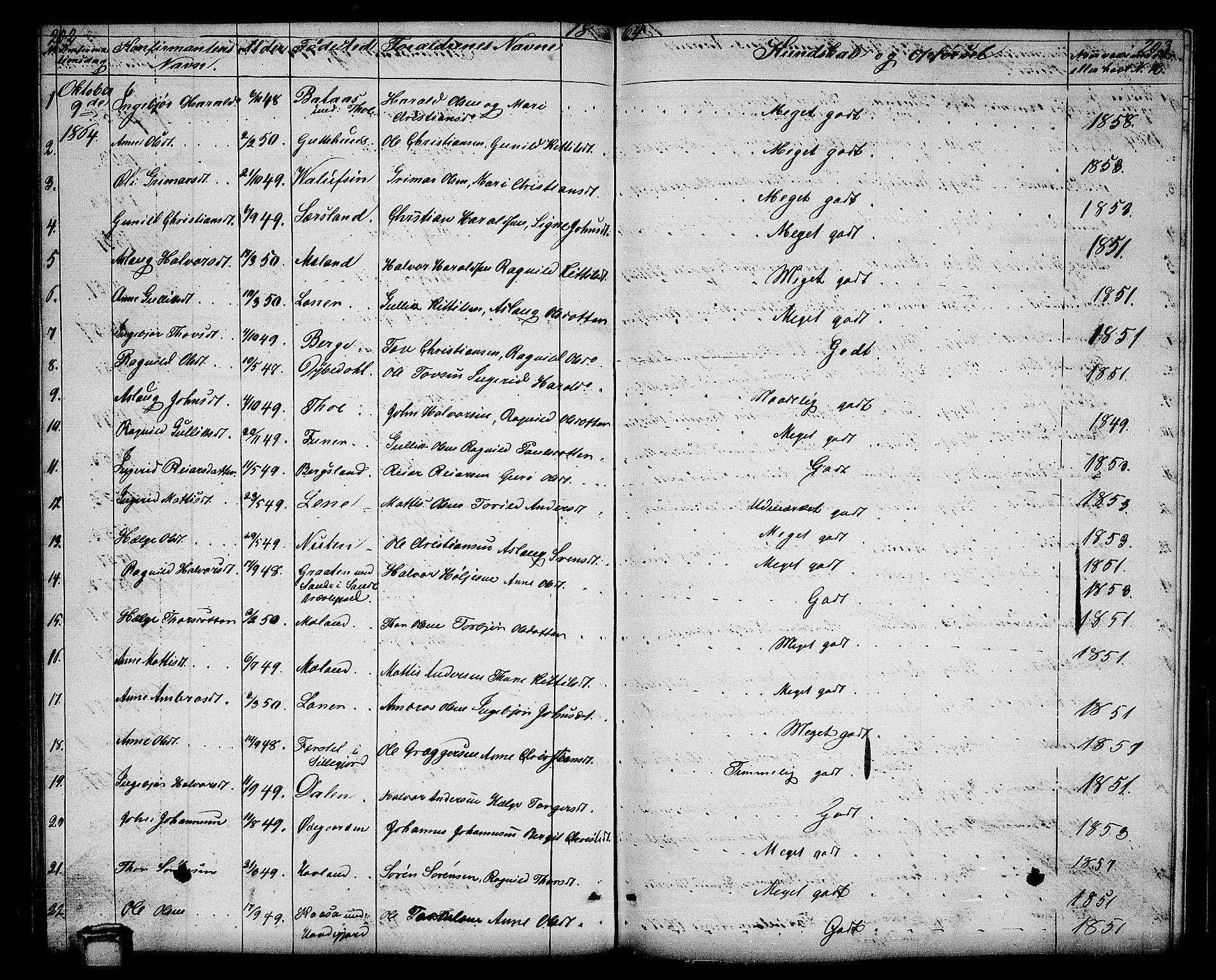 SAKO, Hjartdal kirkebøker, G/Ga/L0002: Klokkerbok nr. I 2, 1854-1888, s. 202-203