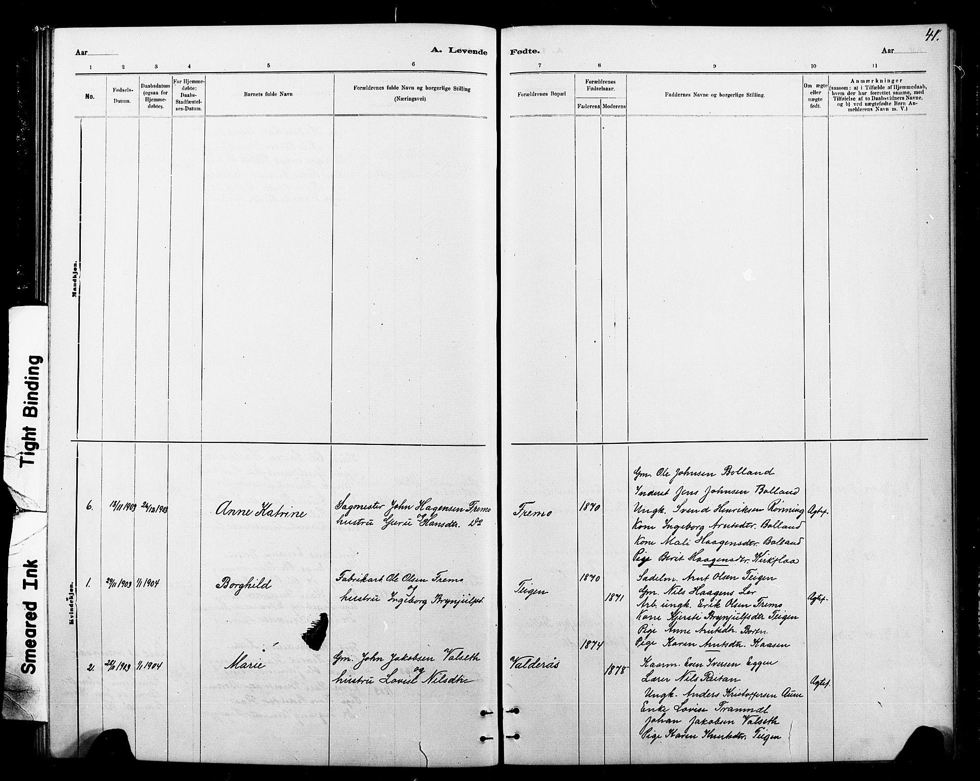 SAT, Ministerialprotokoller, klokkerbøker og fødselsregistre - Sør-Trøndelag, 693/L1123: Klokkerbok nr. 693C04, 1887-1910, s. 41