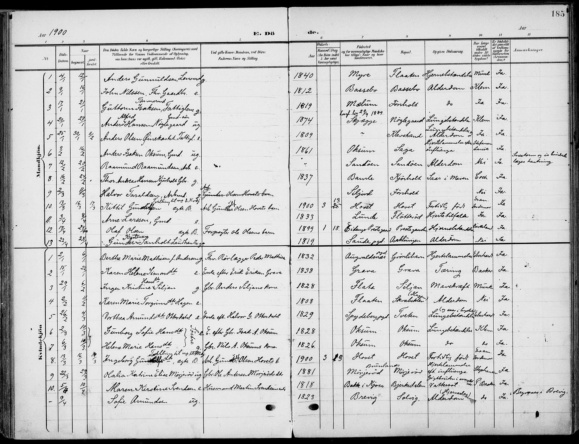 SAKO, Eidanger kirkebøker, F/Fa/L0013: Ministerialbok nr. 13, 1900-1913, s. 185
