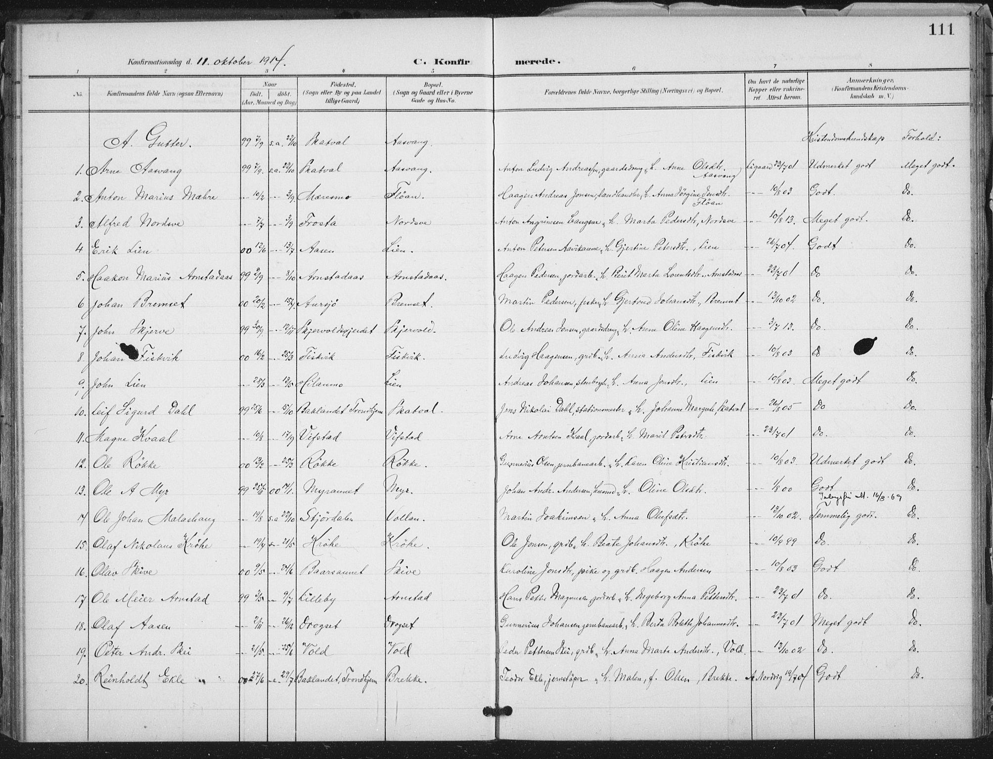 SAT, Ministerialprotokoller, klokkerbøker og fødselsregistre - Nord-Trøndelag, 712/L0101: Ministerialbok nr. 712A02, 1901-1916, s. 111