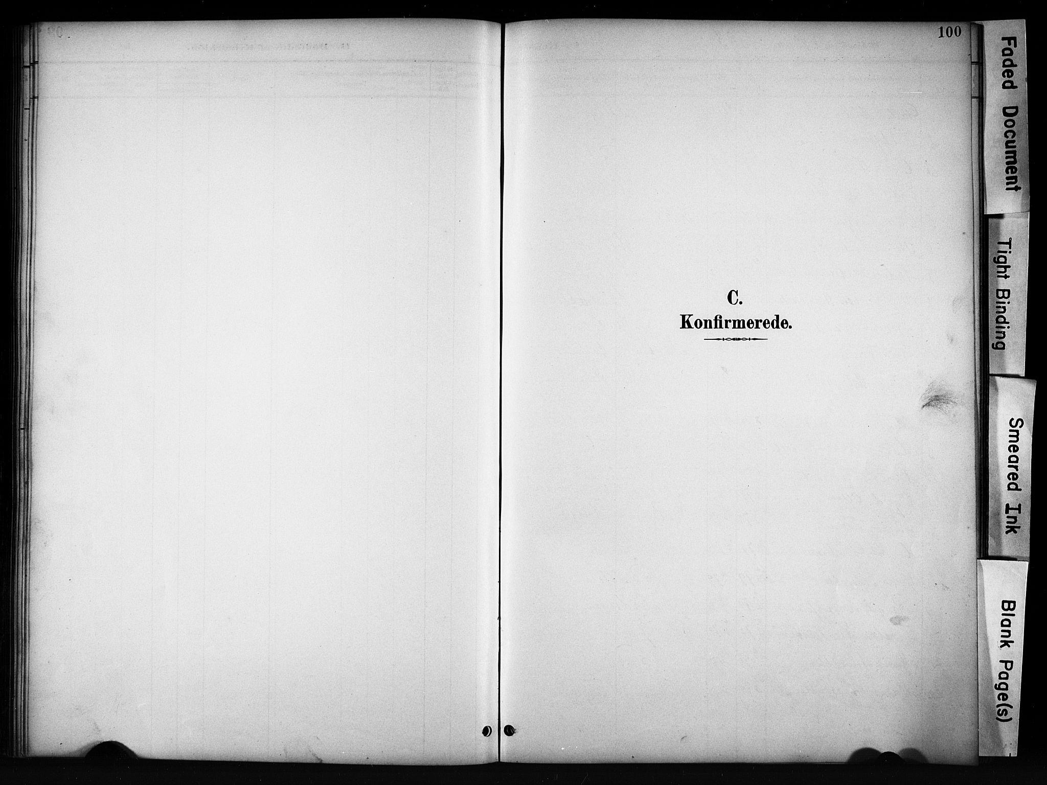 SAH, Vang prestekontor, Valdres, Klokkerbok nr. 6, 1893-1918, s. 100