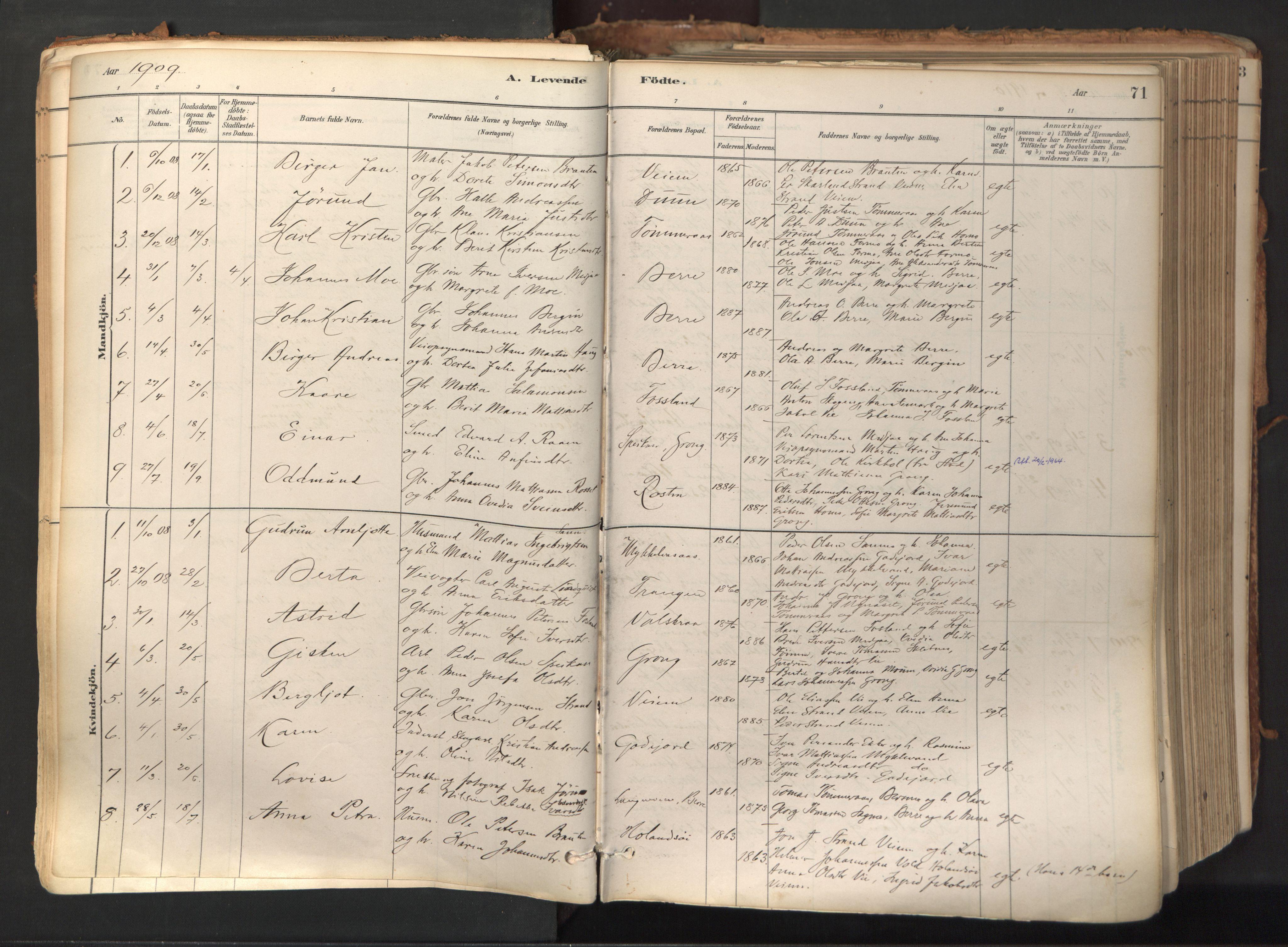 SAT, Ministerialprotokoller, klokkerbøker og fødselsregistre - Nord-Trøndelag, 758/L0519: Ministerialbok nr. 758A04, 1880-1926, s. 71