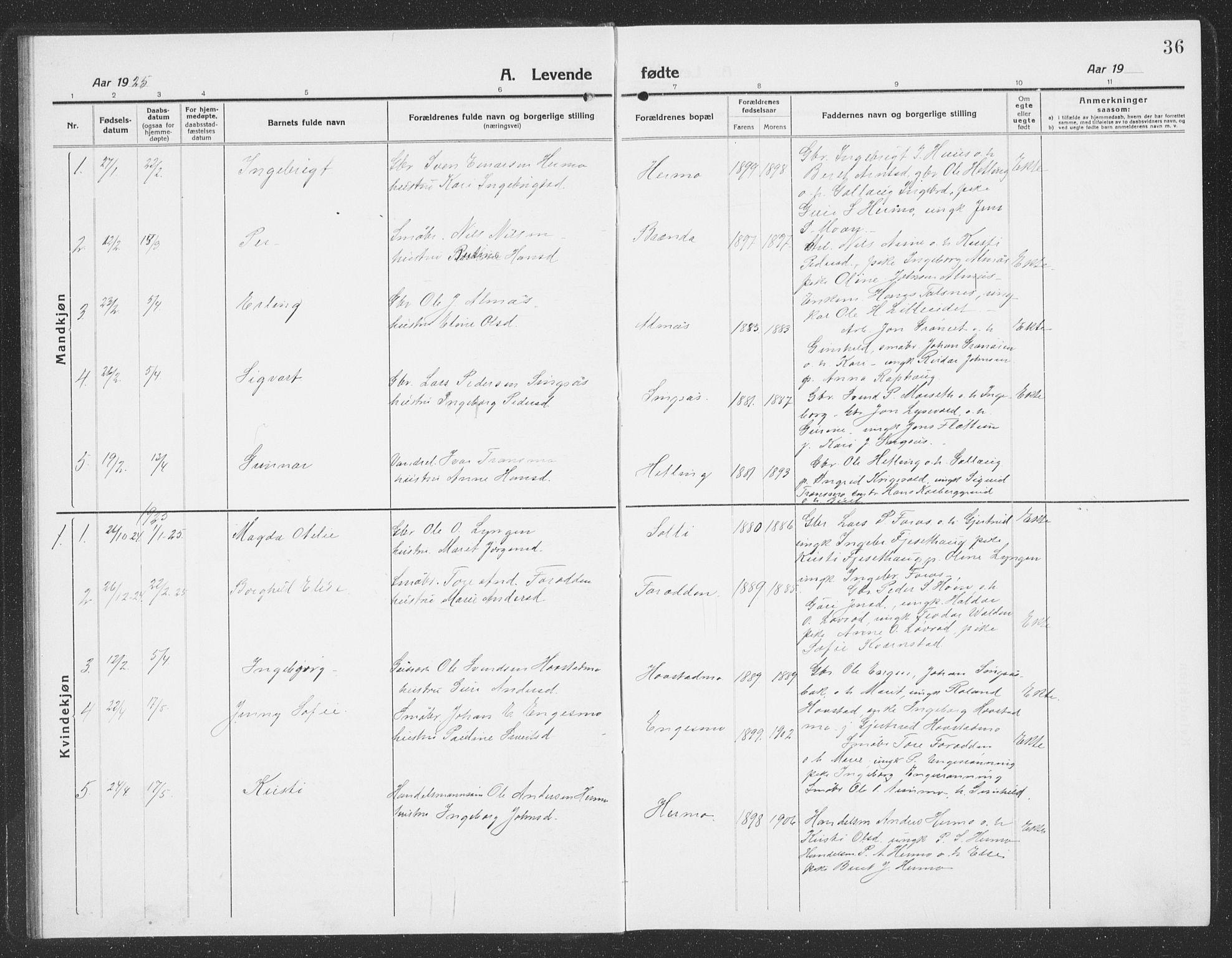 SAT, Ministerialprotokoller, klokkerbøker og fødselsregistre - Sør-Trøndelag, 688/L1030: Klokkerbok nr. 688C05, 1916-1939, s. 36