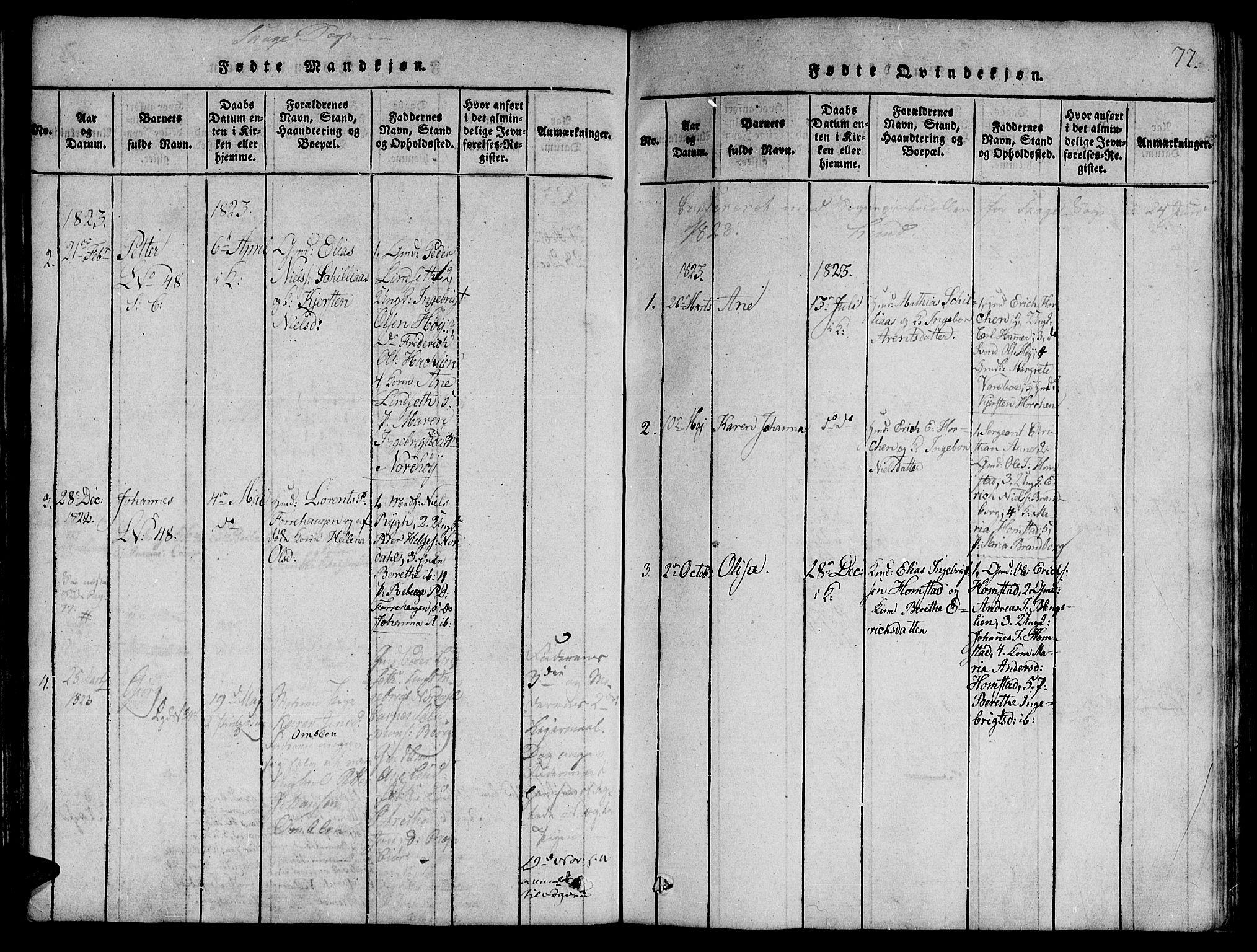 SAT, Ministerialprotokoller, klokkerbøker og fødselsregistre - Nord-Trøndelag, 764/L0546: Ministerialbok nr. 764A06 /4, 1817-1823, s. 77