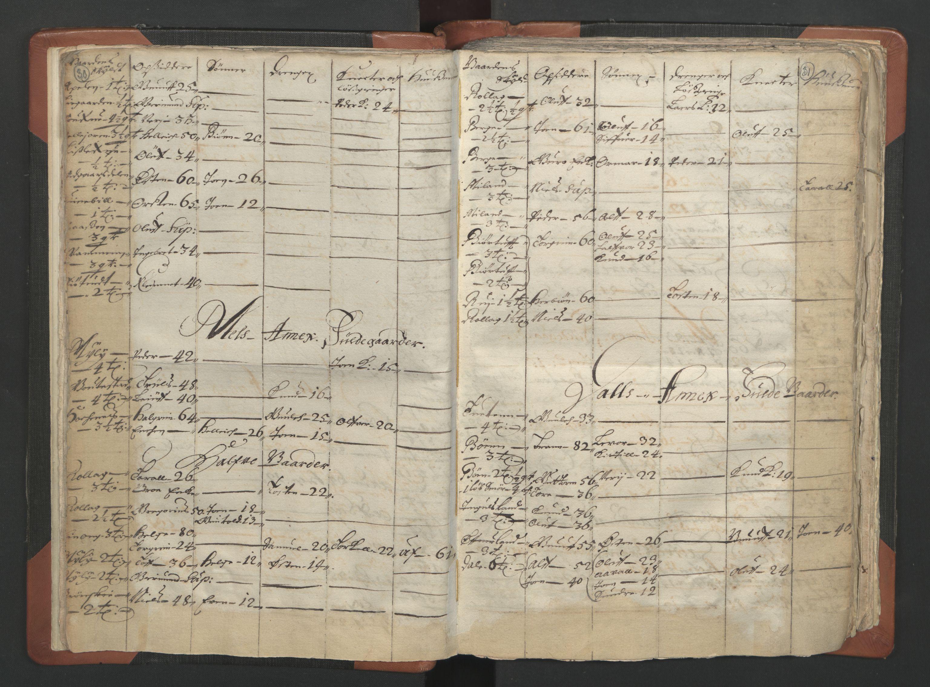 RA, Sogneprestenes manntall 1664-1666, nr. 12: Øvre Telemark prosti, Nedre Telemark prosti og Bamble prosti, 1664-1666, s. 30-31