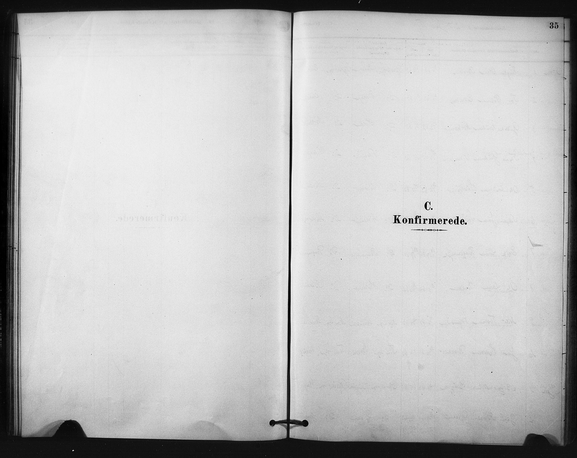 SAKO, Nore kirkebøker, F/Fc/L0003: Ministerialbok nr. III 3, 1878-1884, s. 35