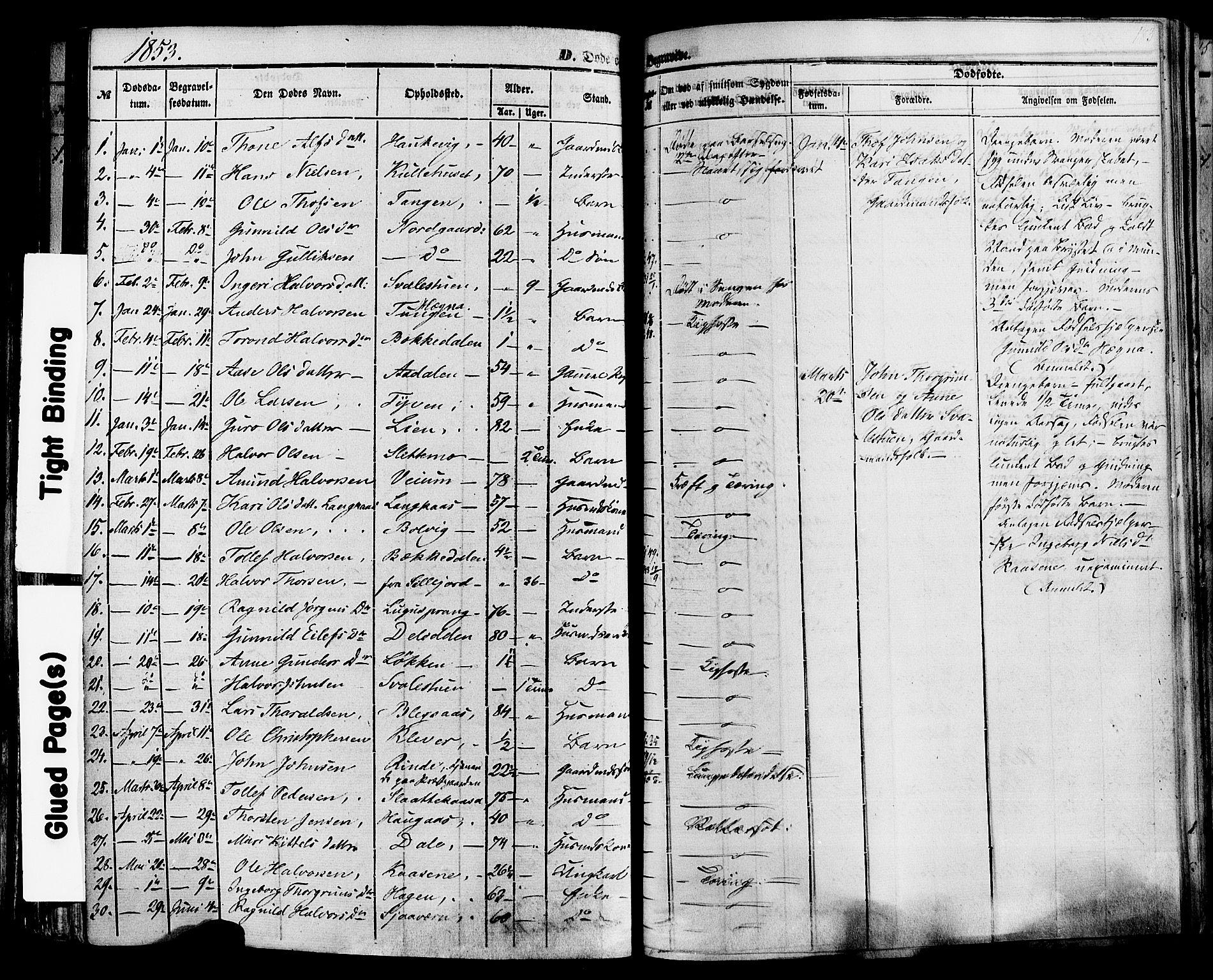 SAKO, Sauherad kirkebøker, F/Fa/L0007: Ministerialbok nr. I 7, 1851-1873, s. 183