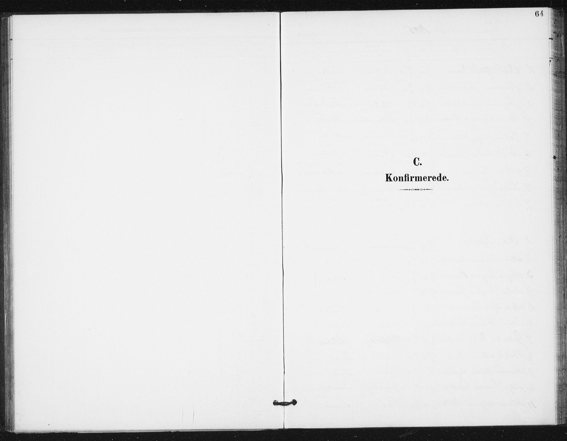 SAT, Ministerialprotokoller, klokkerbøker og fødselsregistre - Sør-Trøndelag, 654/L0664: Ministerialbok nr. 654A02, 1895-1907, s. 64
