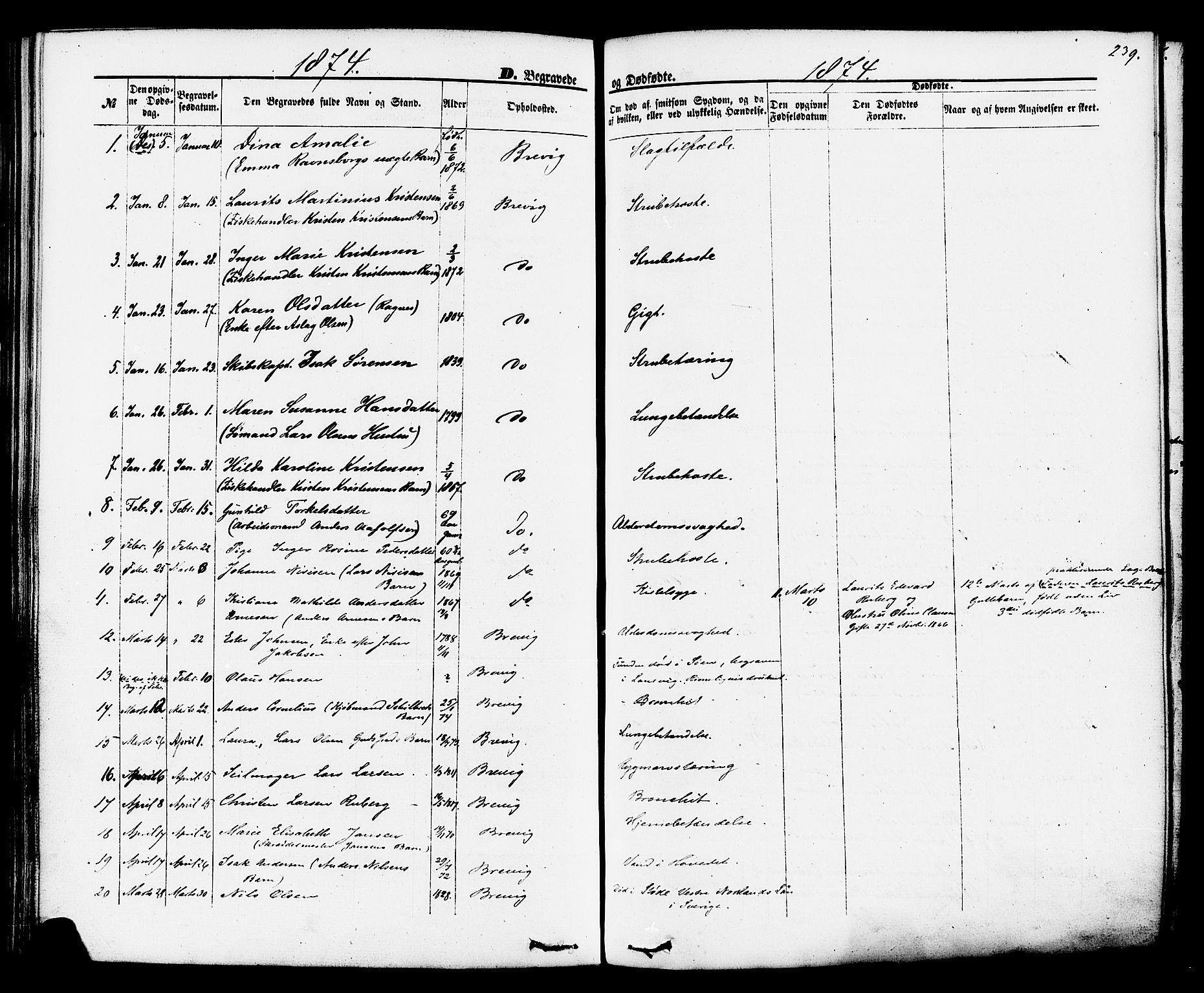 SAKO, Brevik kirkebøker, F/Fa/L0006: Ministerialbok nr. 6, 1866-1881, s. 239