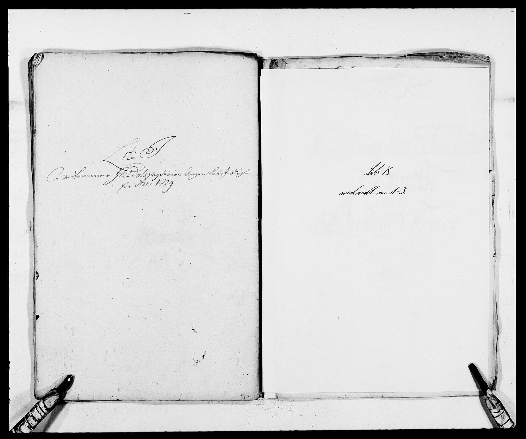 RA, Rentekammeret inntil 1814, Reviderte regnskaper, Fogderegnskap, R59/L3940: Fogderegnskap Gauldal, 1689-1690, s. 102