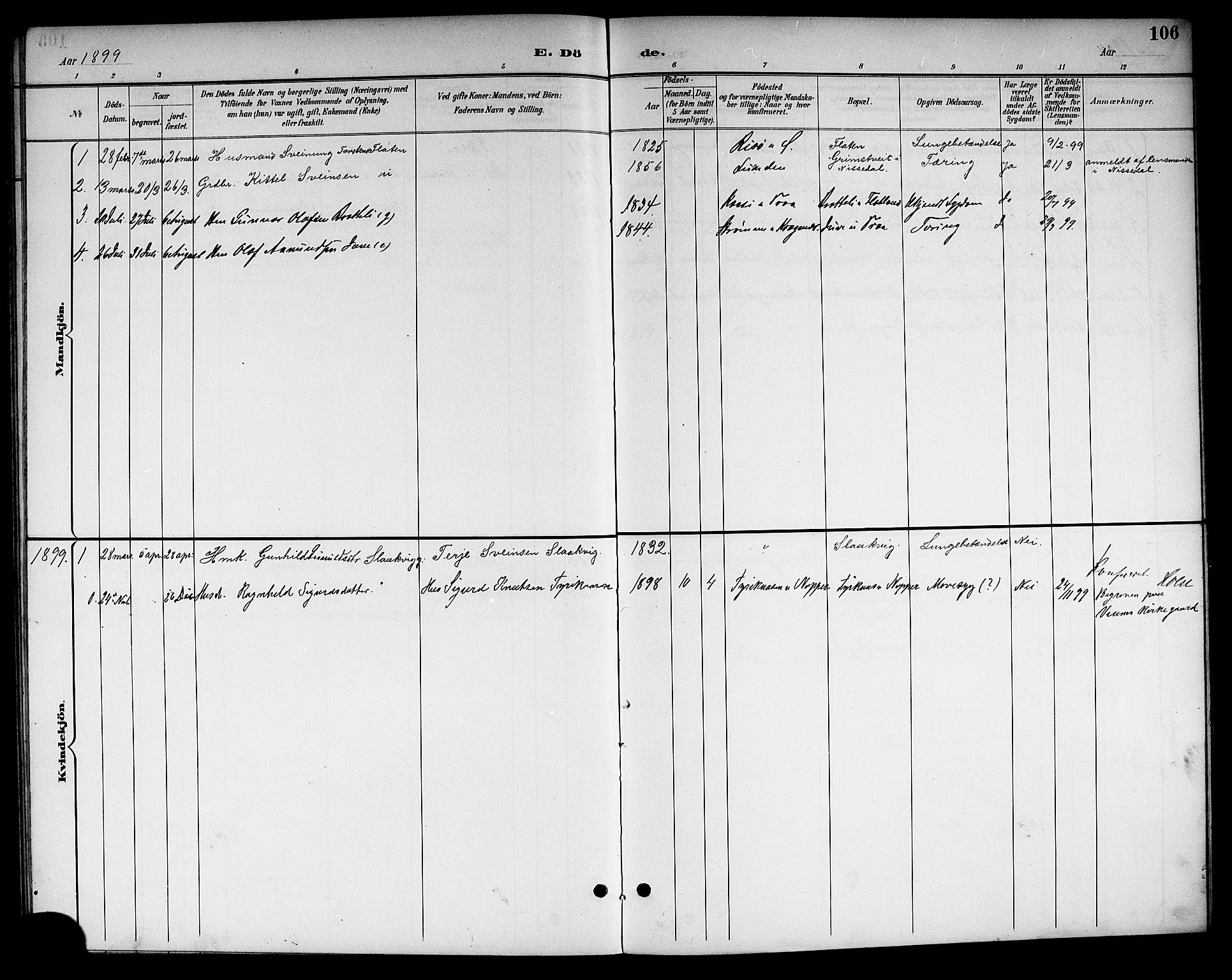 SAKO, Kviteseid kirkebøker, G/Gc/L0001: Klokkerbok nr. III 1, 1893-1916, s. 106