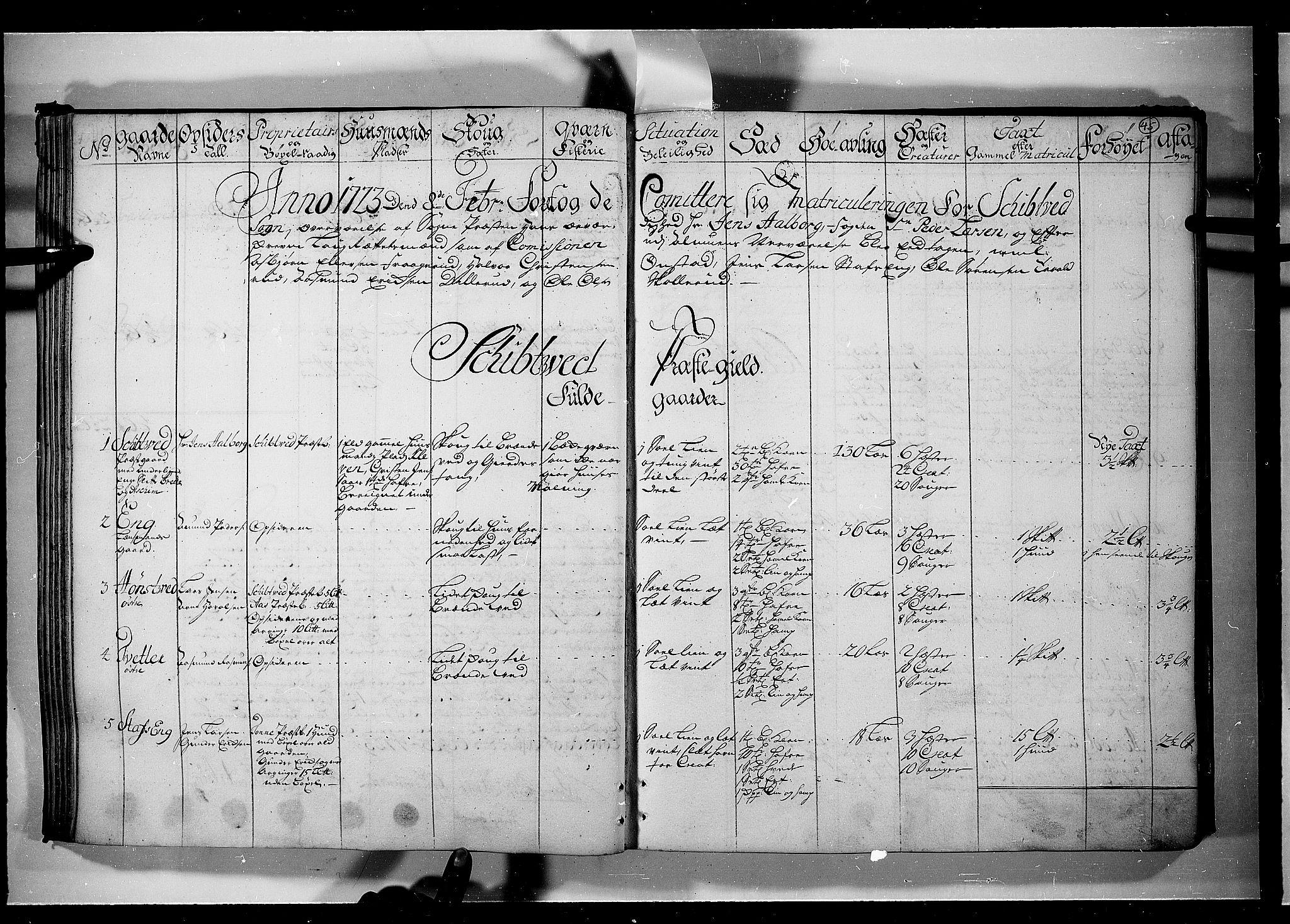 RA, Rentekammeret inntil 1814, Realistisk ordnet avdeling, N/Nb/Nbf/L0099: Rakkestad, Heggen og Frøland eksaminasjonsprotokoll, 1723, s. 44b-45a
