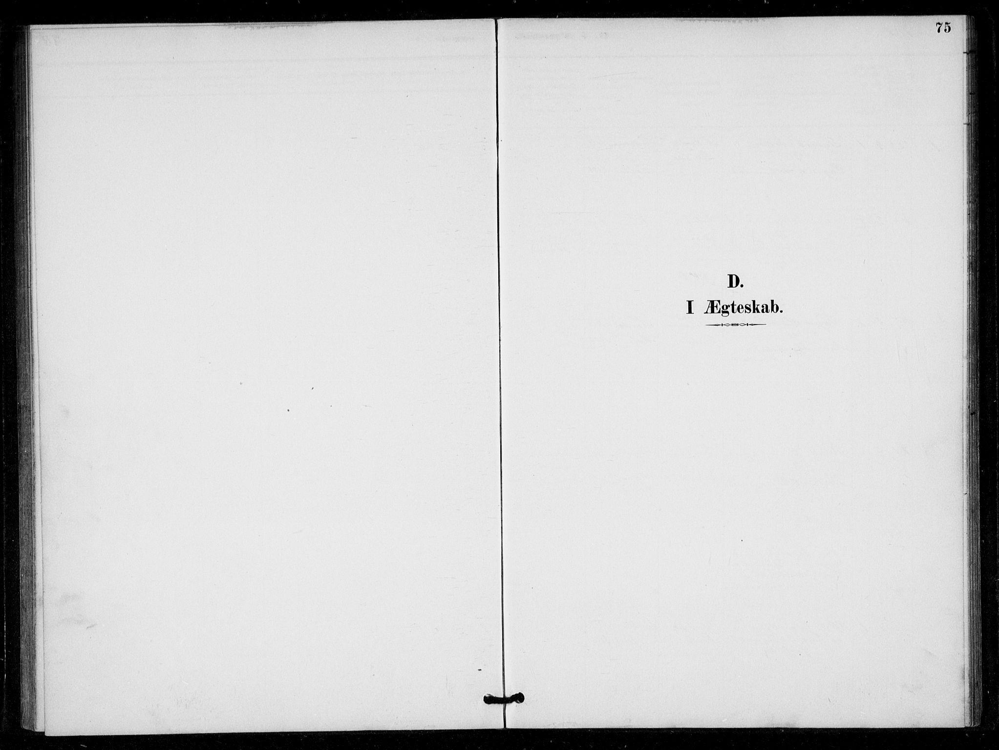 SAK, Bygland sokneprestkontor, F/Fa/Fad/L0001: Ministerialbok nr. A 1, 1885-1906, s. 75