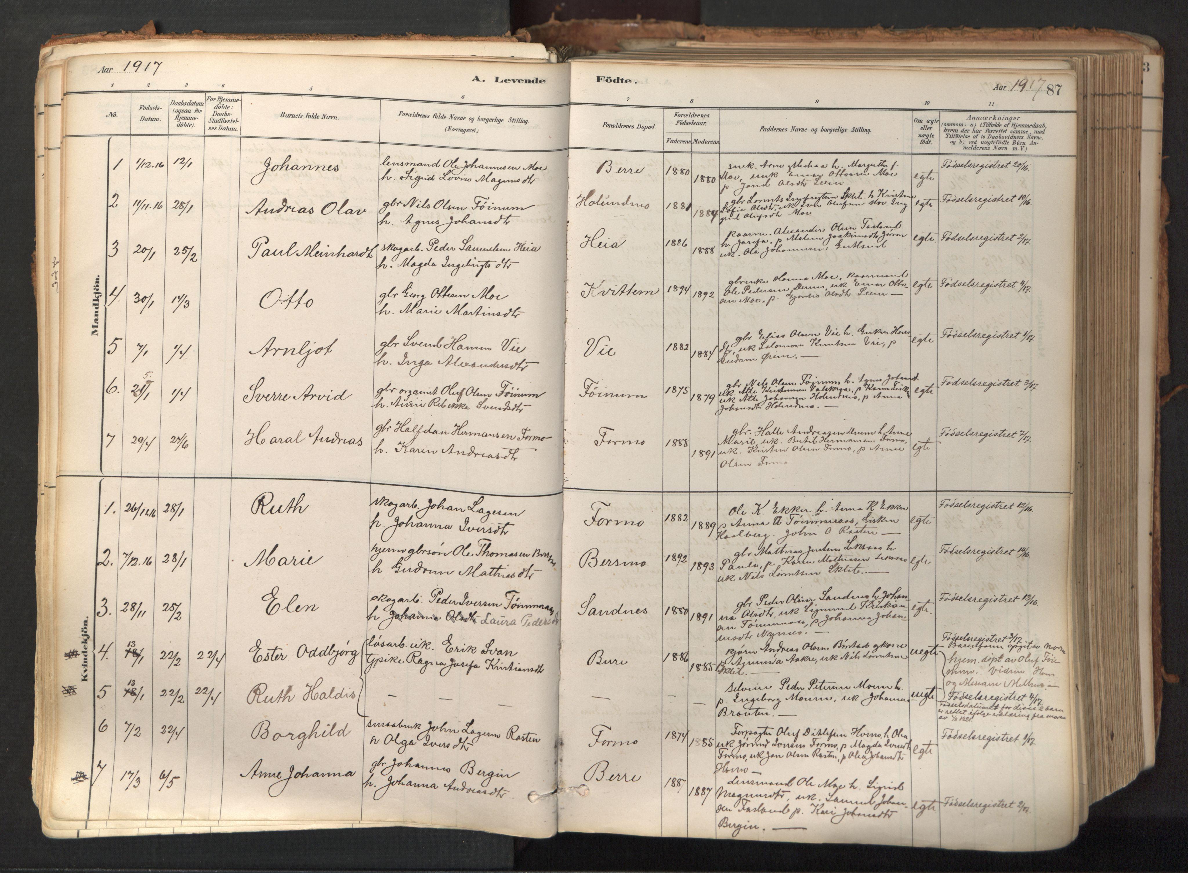 SAT, Ministerialprotokoller, klokkerbøker og fødselsregistre - Nord-Trøndelag, 758/L0519: Ministerialbok nr. 758A04, 1880-1926, s. 87