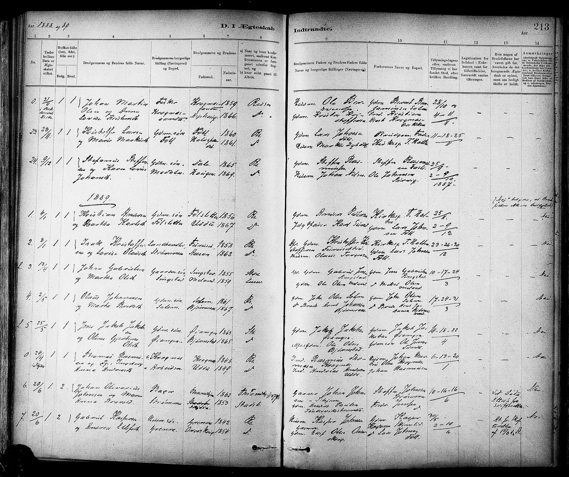 SAT, Ministerialprotokoller, klokkerbøker og fødselsregistre - Sør-Trøndelag, 647/L0634: Ministerialbok nr. 647A01, 1885-1896, s. 213