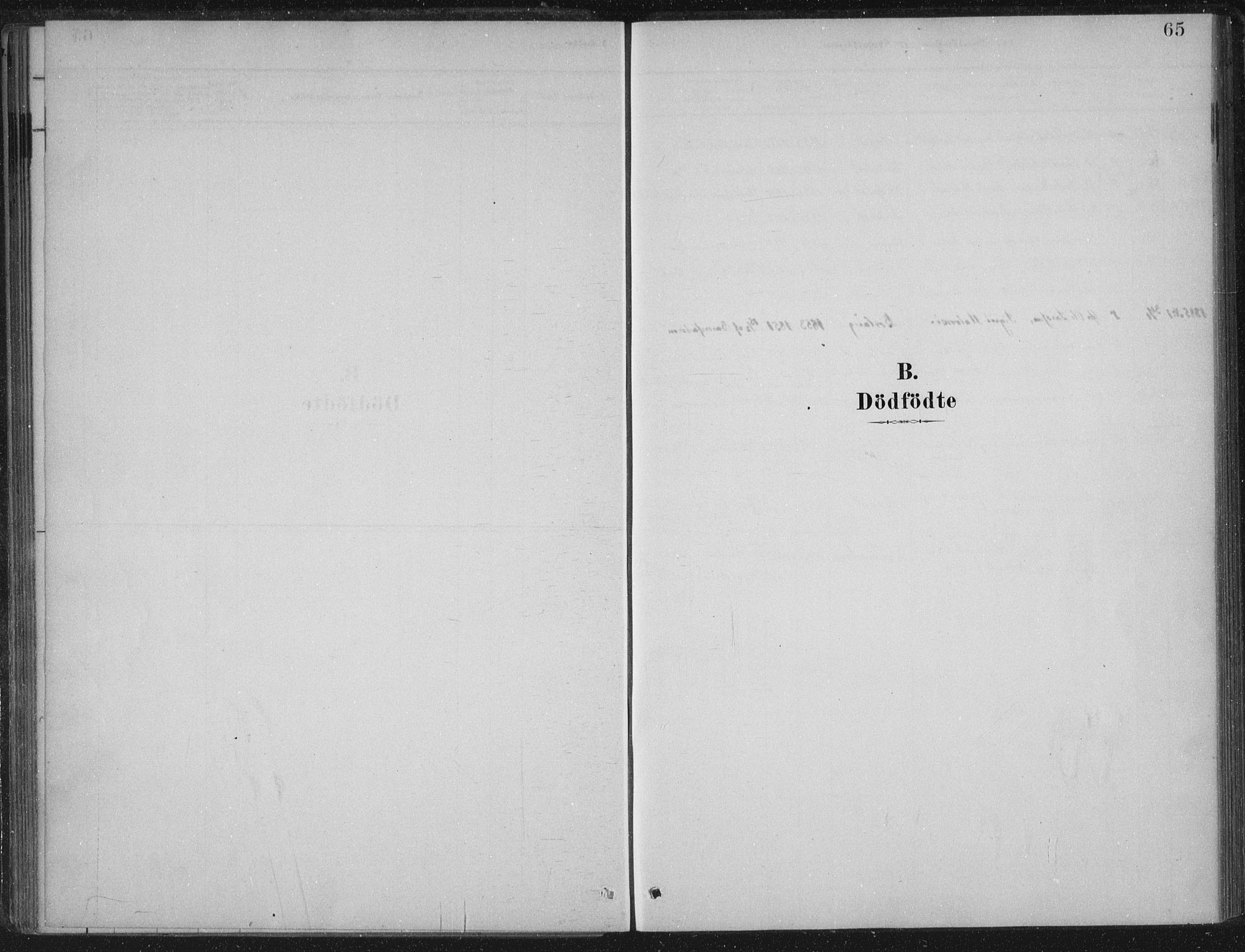 SAB, Lærdal Sokneprestembete, Ministerialbok nr. C  1, 1878-1911, s. 65