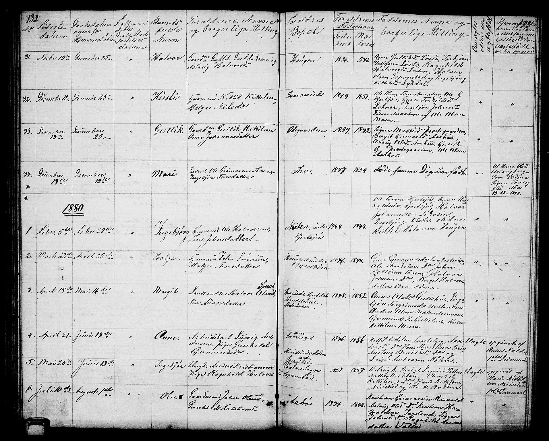 SAKO, Hjartdal kirkebøker, G/Ga/L0002: Klokkerbok nr. I 2, 1854-1888, s. 132-133