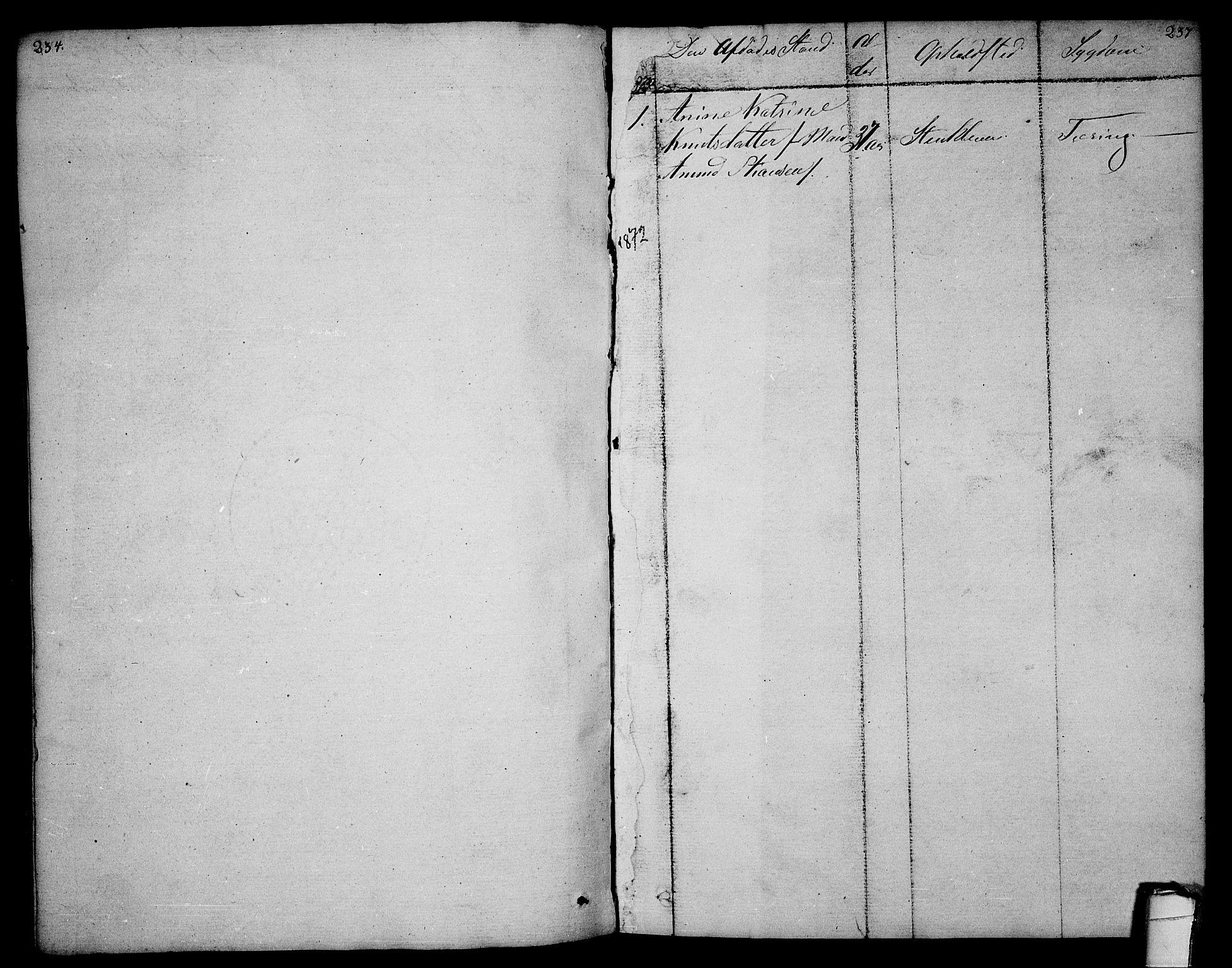 SAKO, Sannidal kirkebøker, F/Fa/L0003: Ministerialbok nr. 3, 1803-1813, s. 236-237