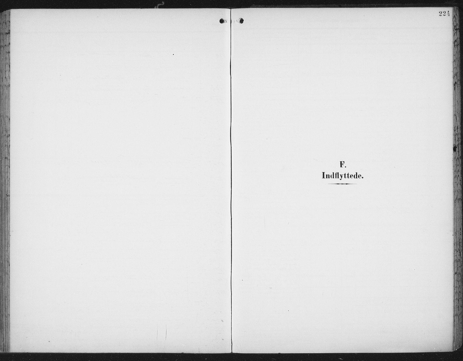 SAT, Ministerialprotokoller, klokkerbøker og fødselsregistre - Nord-Trøndelag, 701/L0011: Ministerialbok nr. 701A11, 1899-1915, s. 224