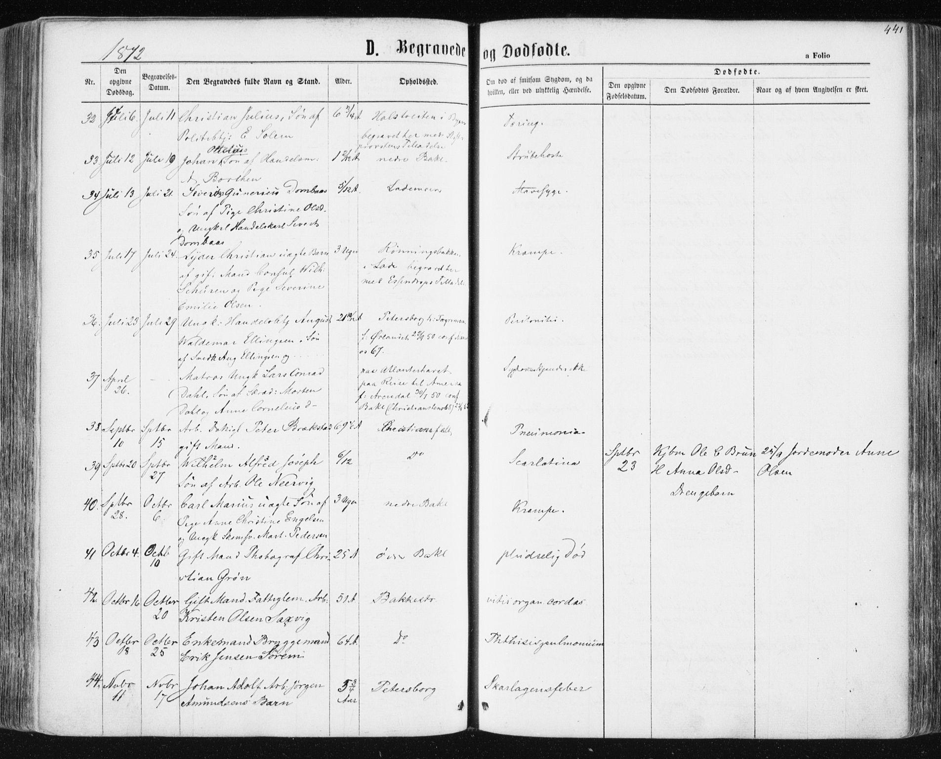 SAT, Ministerialprotokoller, klokkerbøker og fødselsregistre - Sør-Trøndelag, 604/L0186: Ministerialbok nr. 604A07, 1866-1877, s. 441