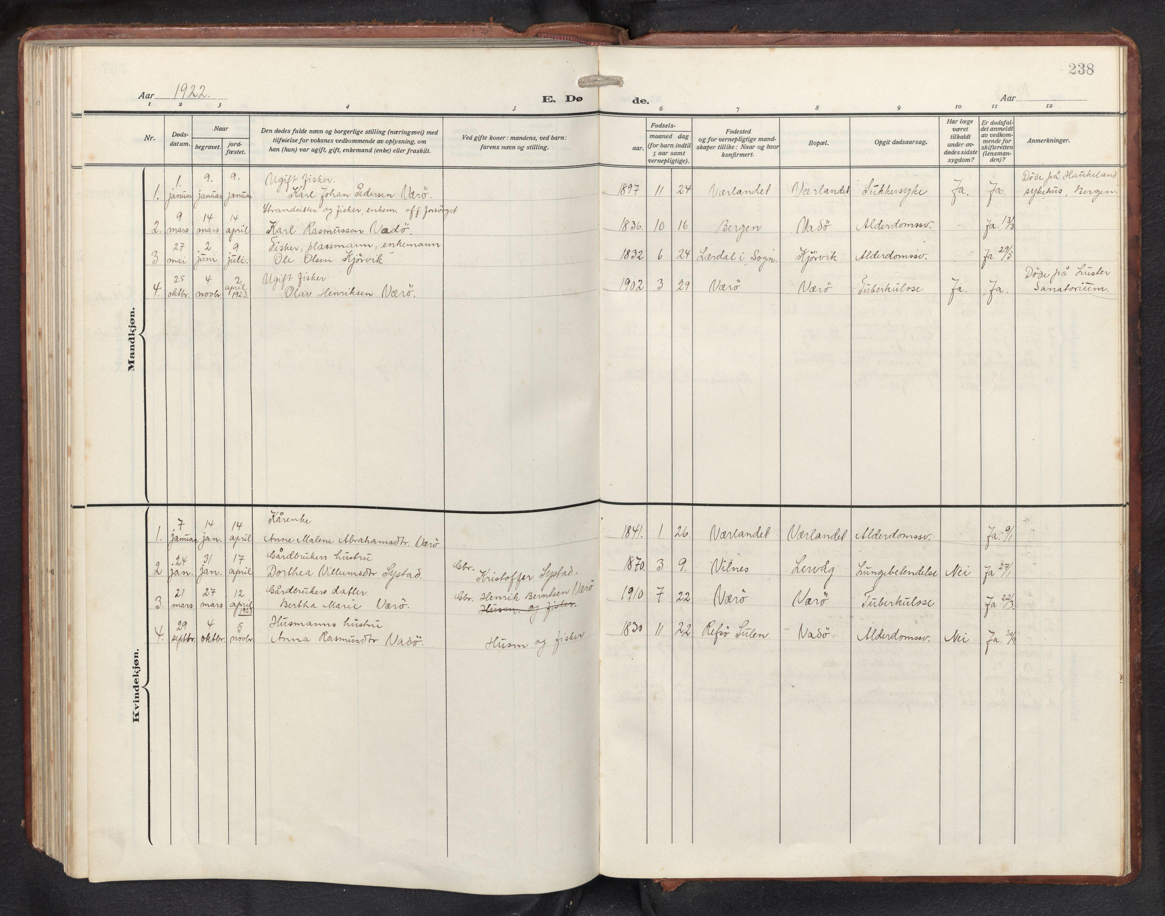 SAB, Askvoll sokneprestembete, H/Hab/Habb/L0002: Klokkerbok nr. B 2, 1910-1947, s. 237b-238a