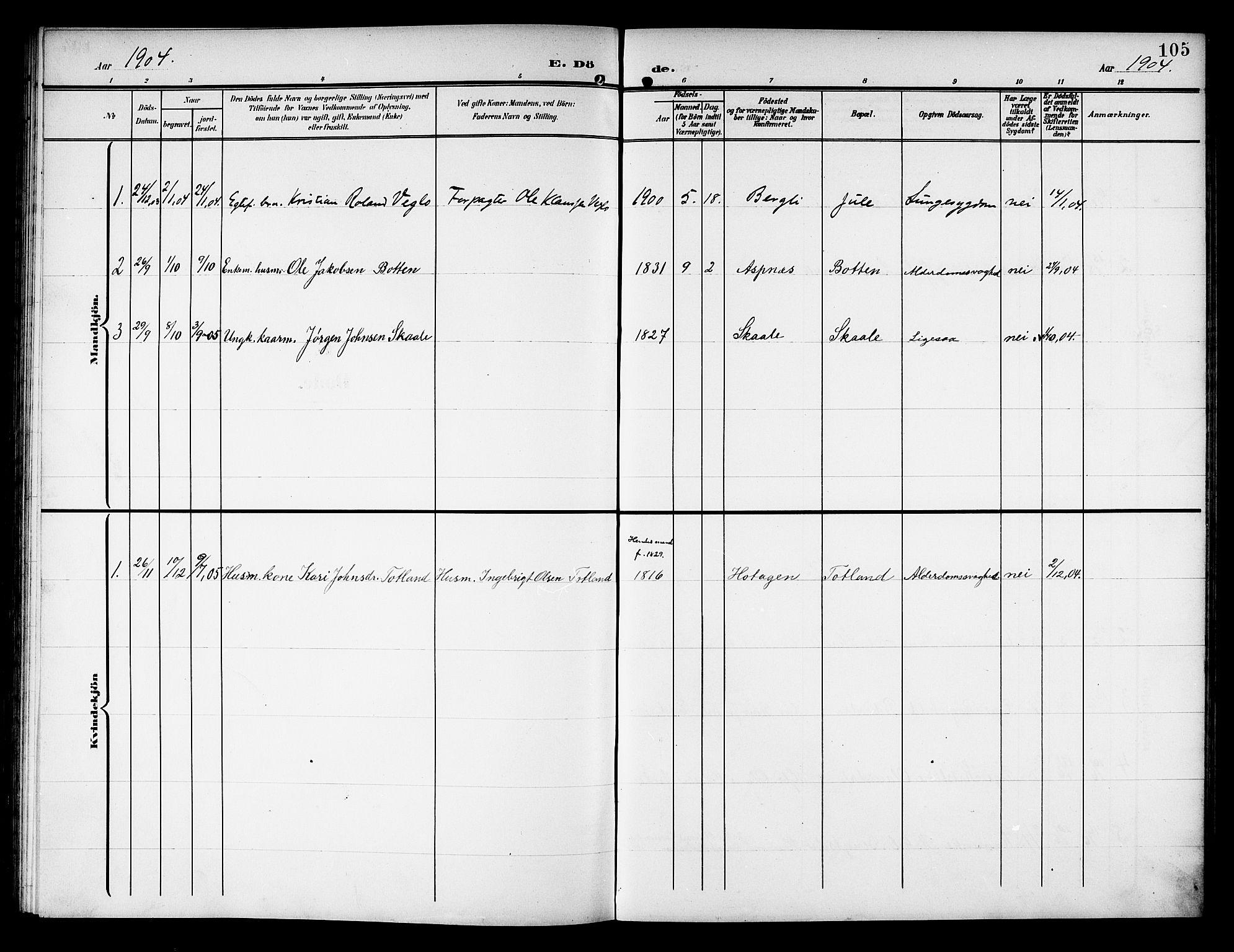 SAT, Ministerialprotokoller, klokkerbøker og fødselsregistre - Nord-Trøndelag, 757/L0506: Klokkerbok nr. 757C01, 1904-1922, s. 105