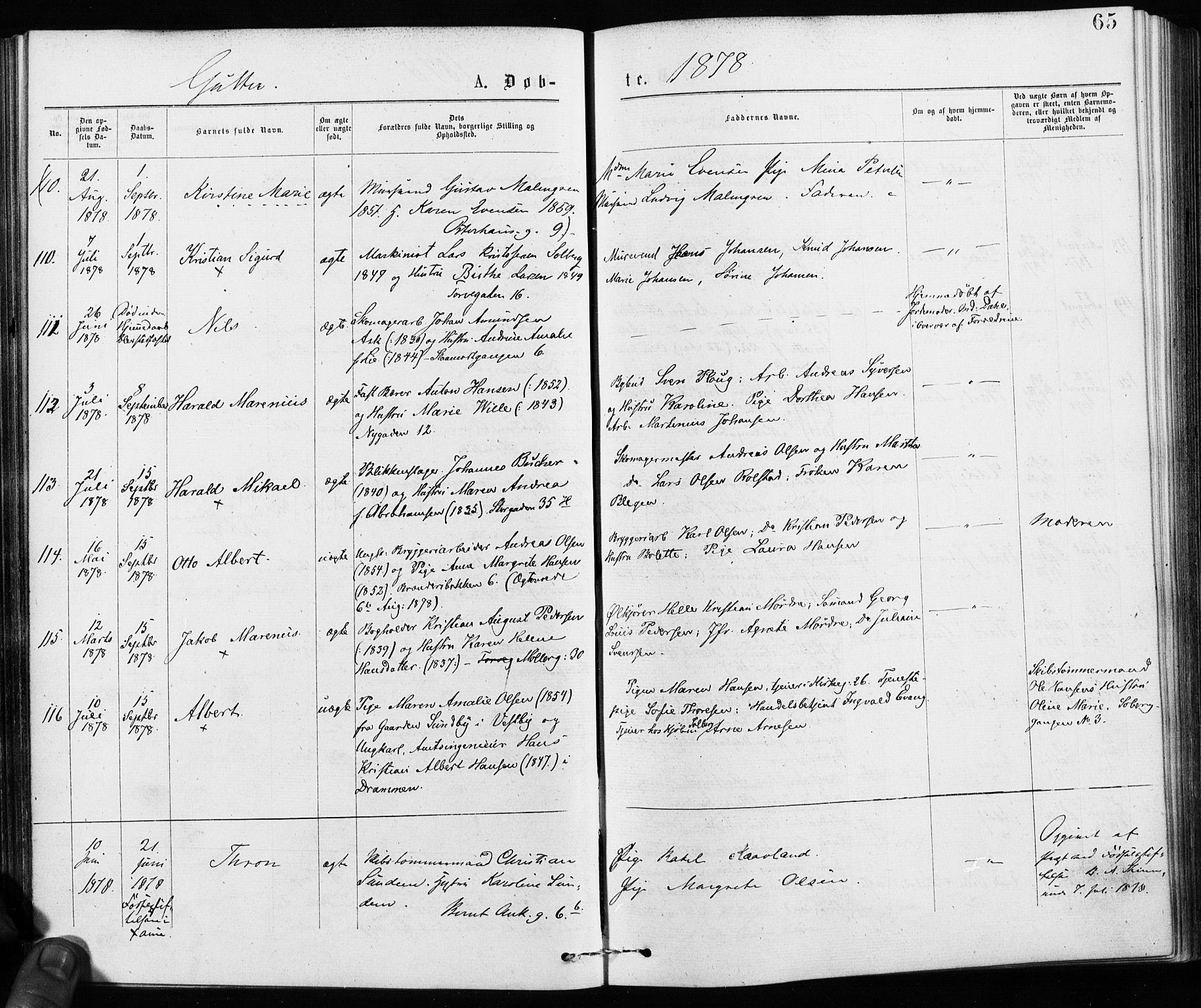 SAO, Jakob prestekontor Kirkebøker, F/Fa/L0001: Ministerialbok nr. 1, 1875-1924, s. 65