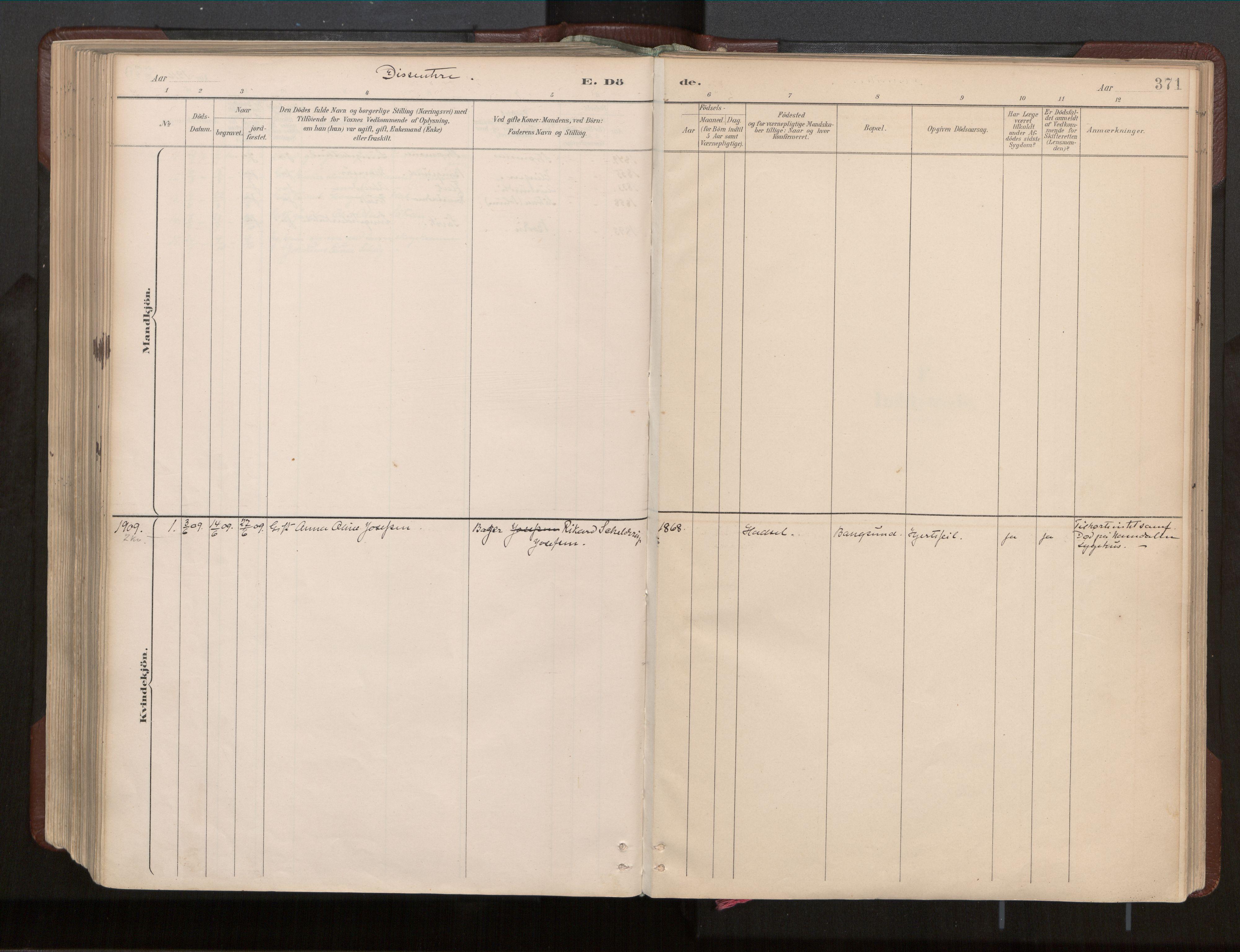 SAT, Ministerialprotokoller, klokkerbøker og fødselsregistre - Nord-Trøndelag, 770/L0589: Ministerialbok nr. 770A03, 1887-1929, s. 371