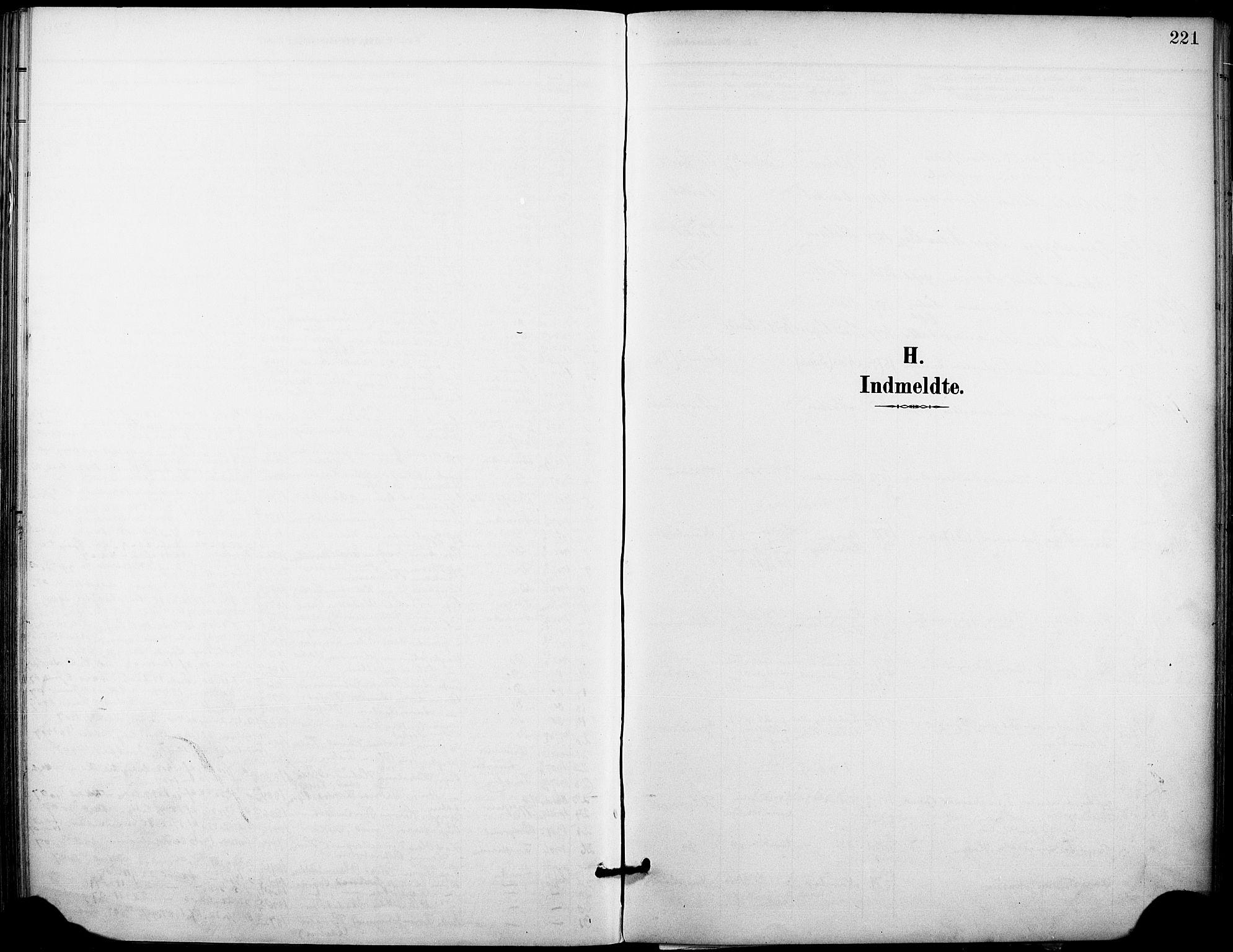 SAKO, Holla kirkebøker, F/Fa/L0010: Ministerialbok nr. 10, 1897-1907, s. 221