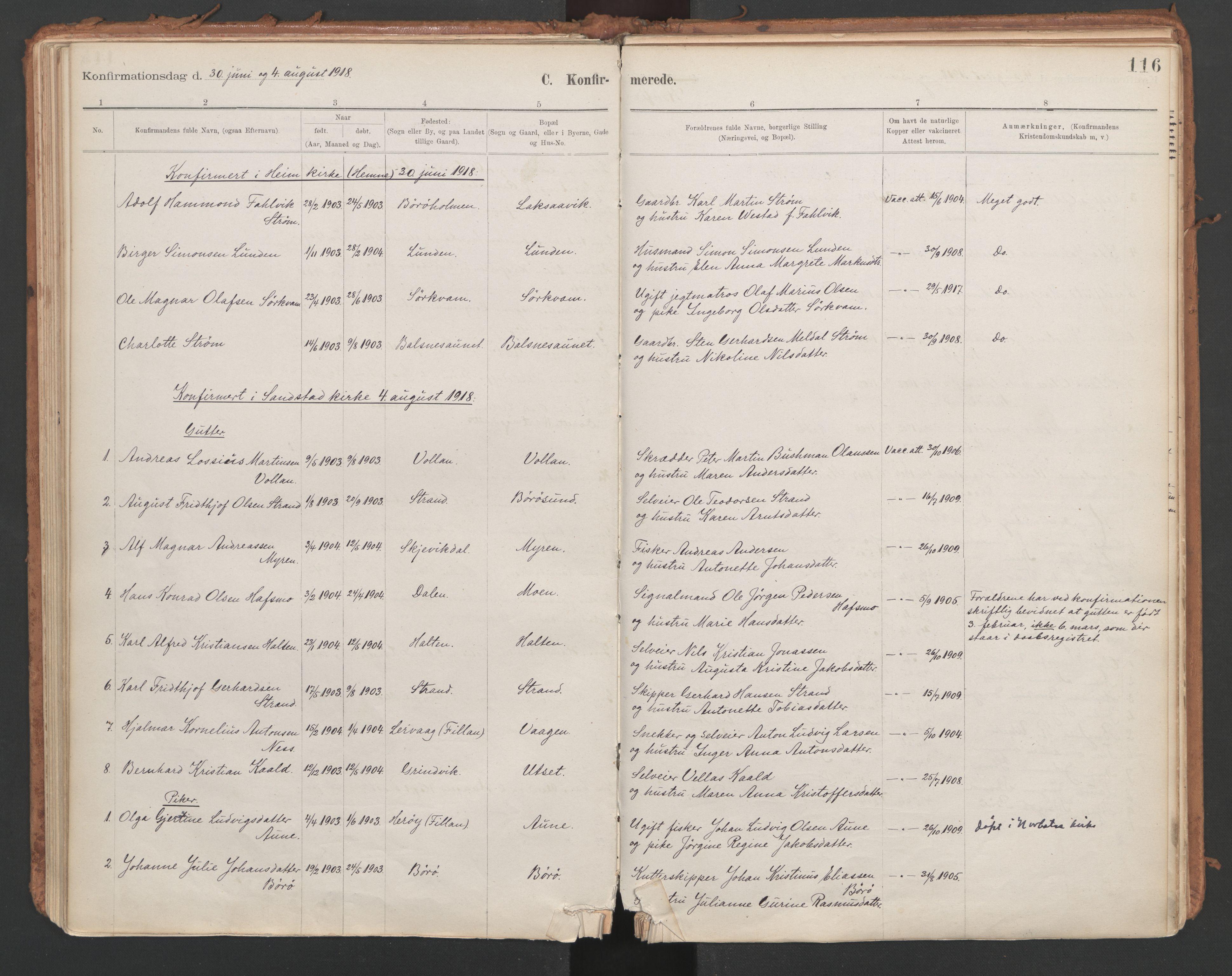 SAT, Ministerialprotokoller, klokkerbøker og fødselsregistre - Sør-Trøndelag, 639/L0572: Ministerialbok nr. 639A01, 1890-1920, s. 116